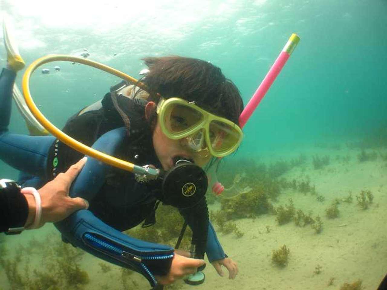 和歌山県南紀白浜の水中で体験ダイビング中画像1