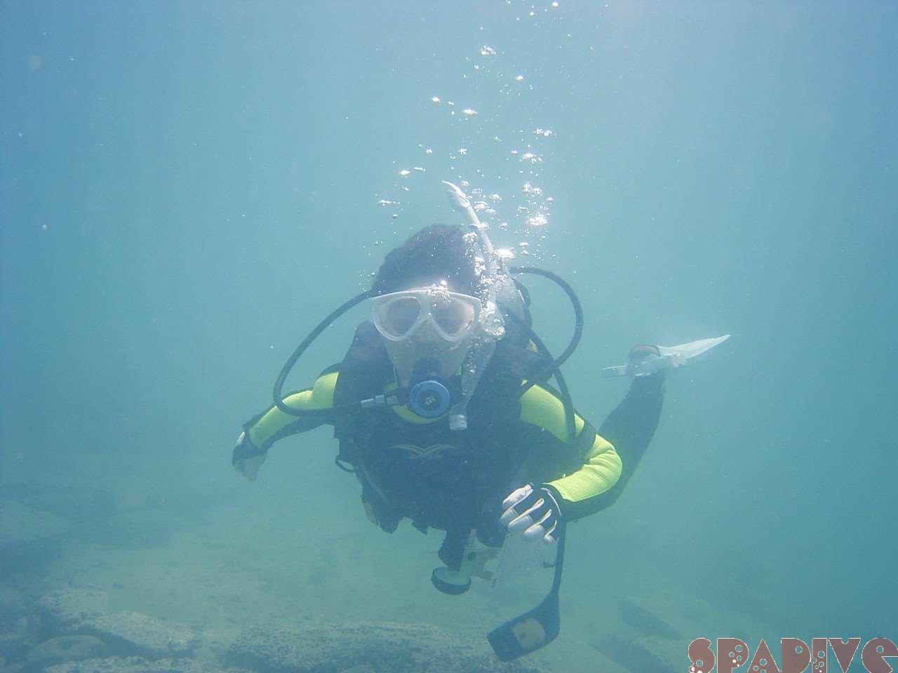2004年6月南紀白浜海中画像