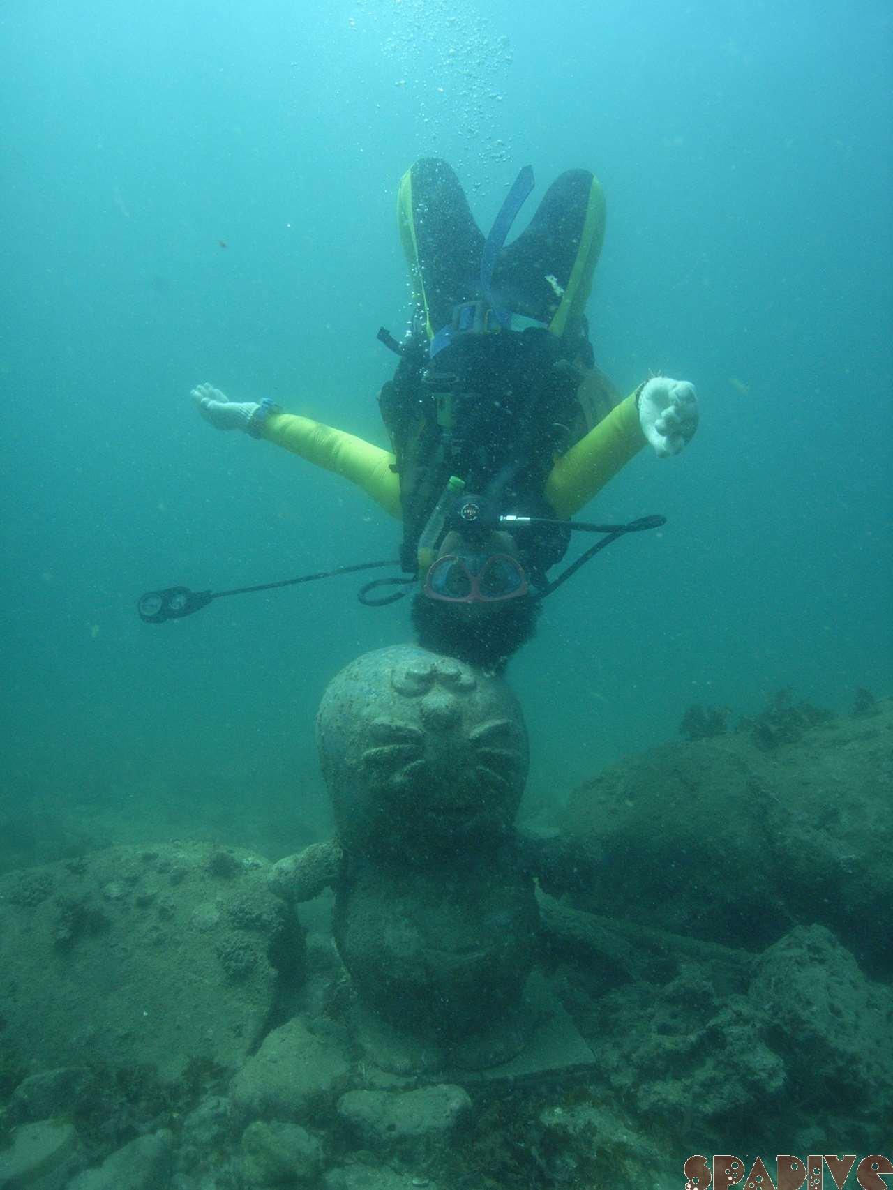 2007年7月撮影海フォトギャラリー|南紀白浜スパダイブ