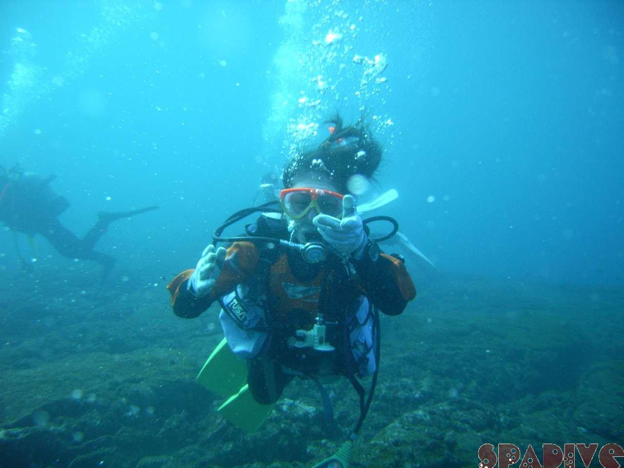 2007年12月撮影海フォトギャラリー|南紀白浜スパダイブ