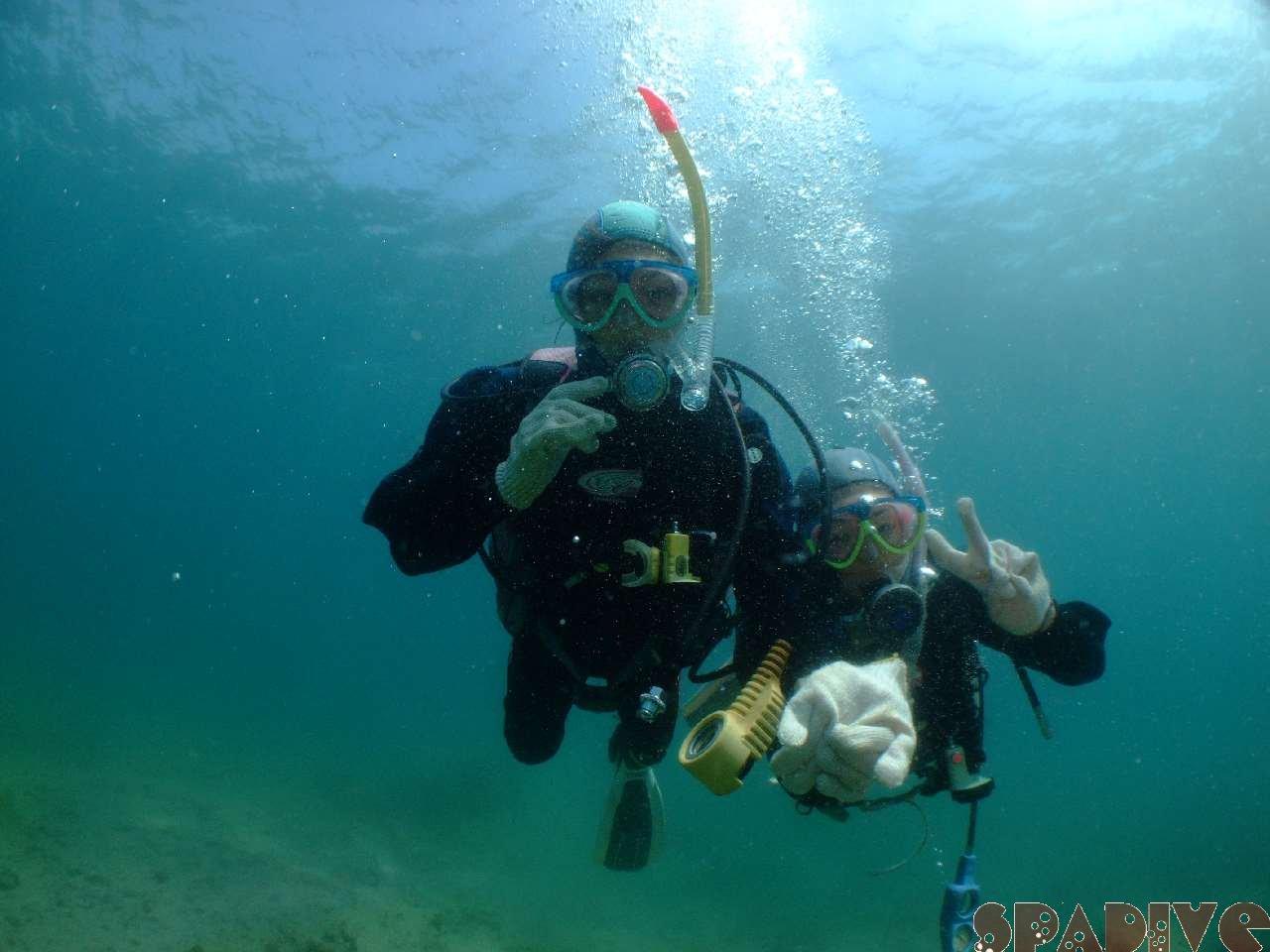 2009年3月撮影海フォトギャラリー 南紀白浜スパダイブ