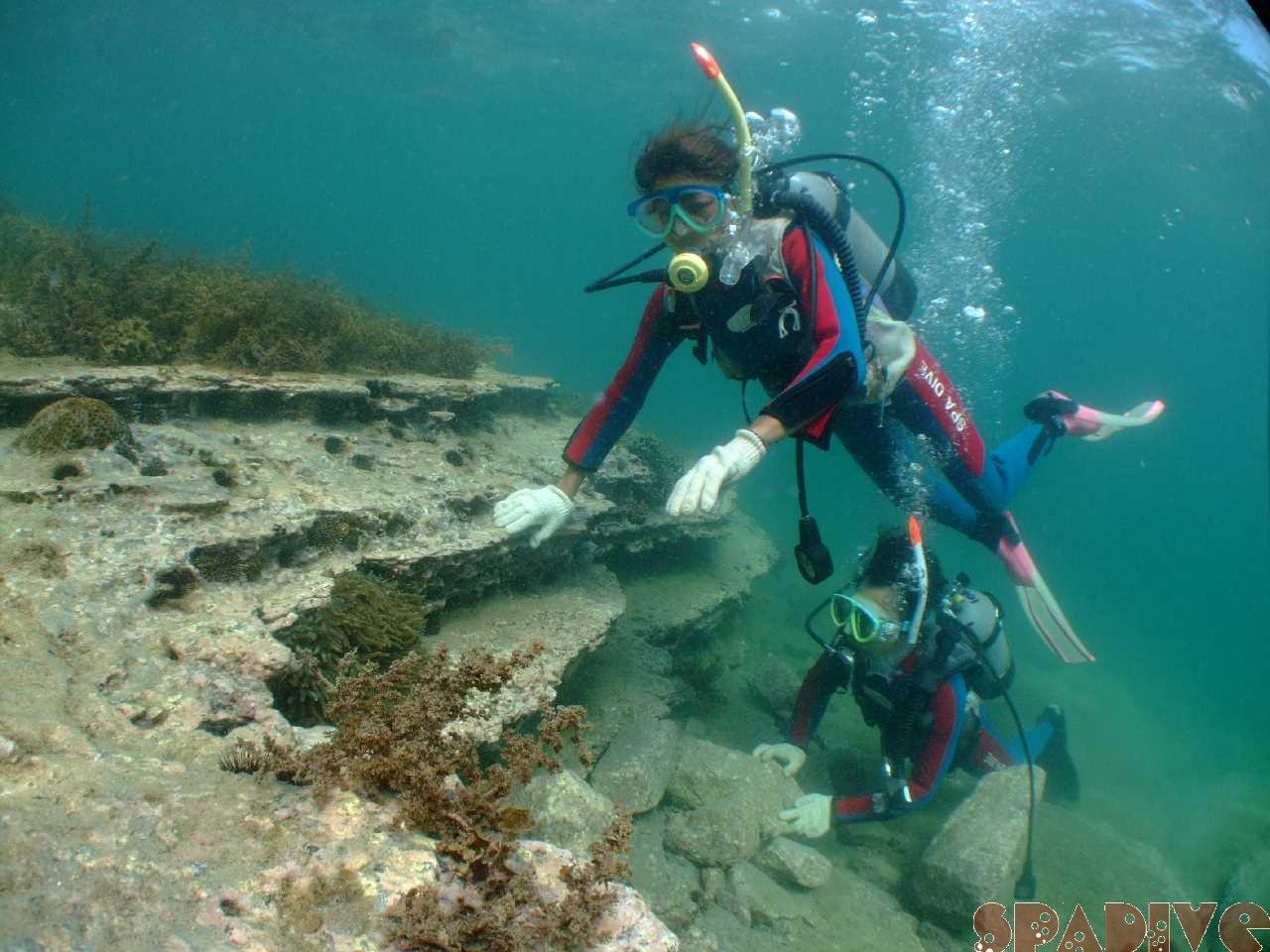 体験ダイビング|7/16/2009南紀白浜 権現崎