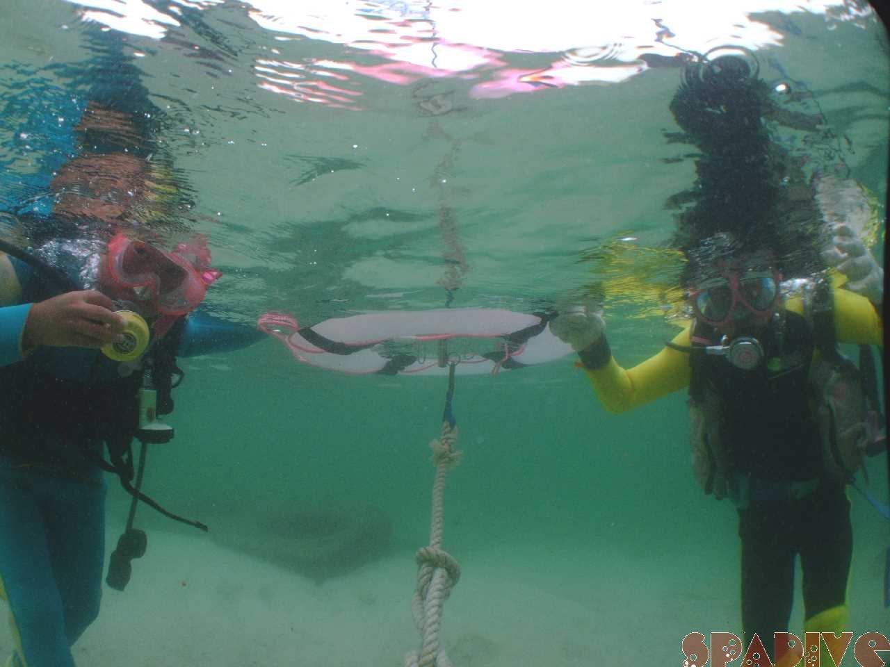 10歳お子達と体験ダイビング&スノーケリング|7/27/2009南紀白浜