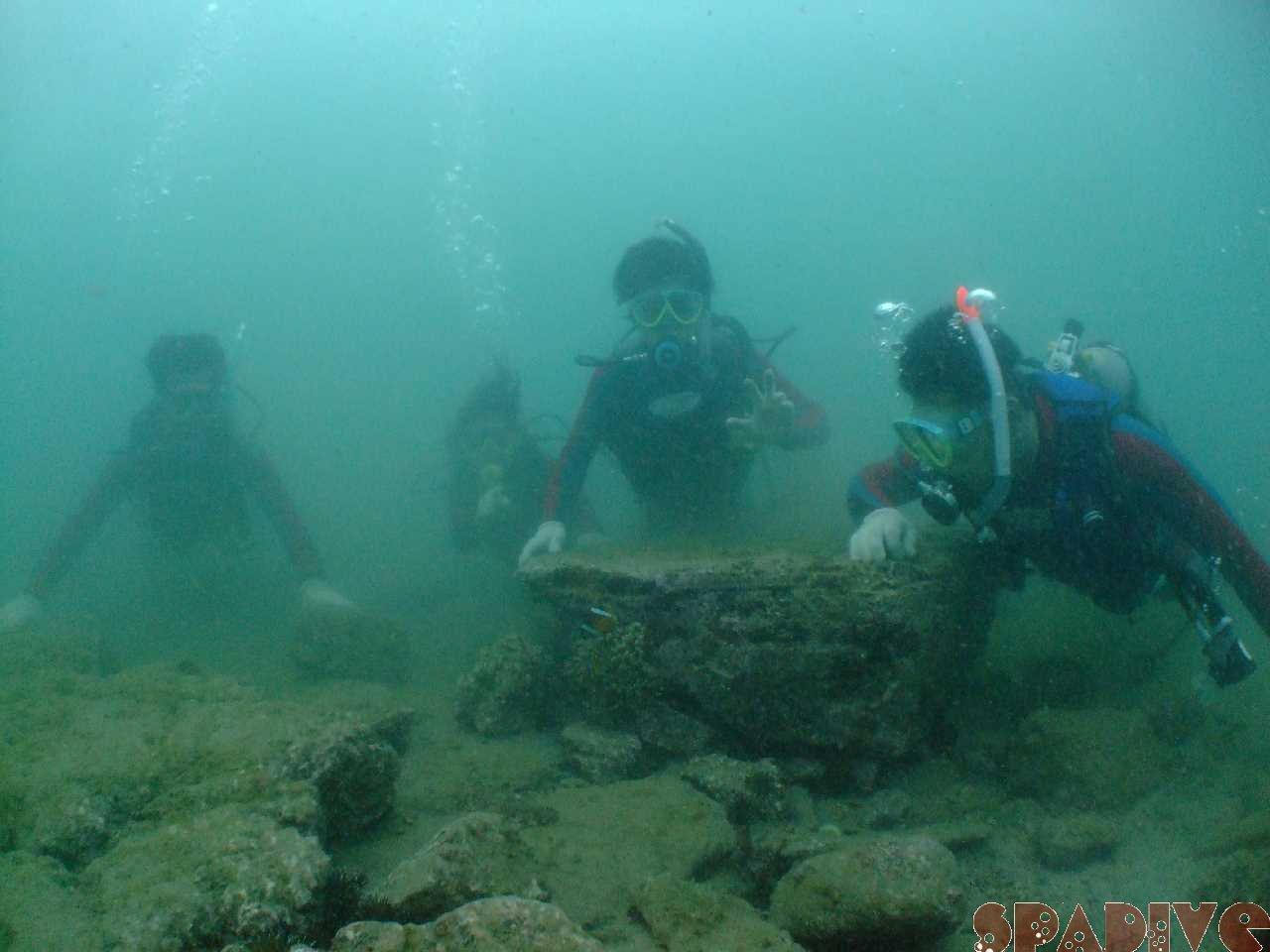 体験ダイビング&OWDライセンス取得コース|8/09/2009白浜