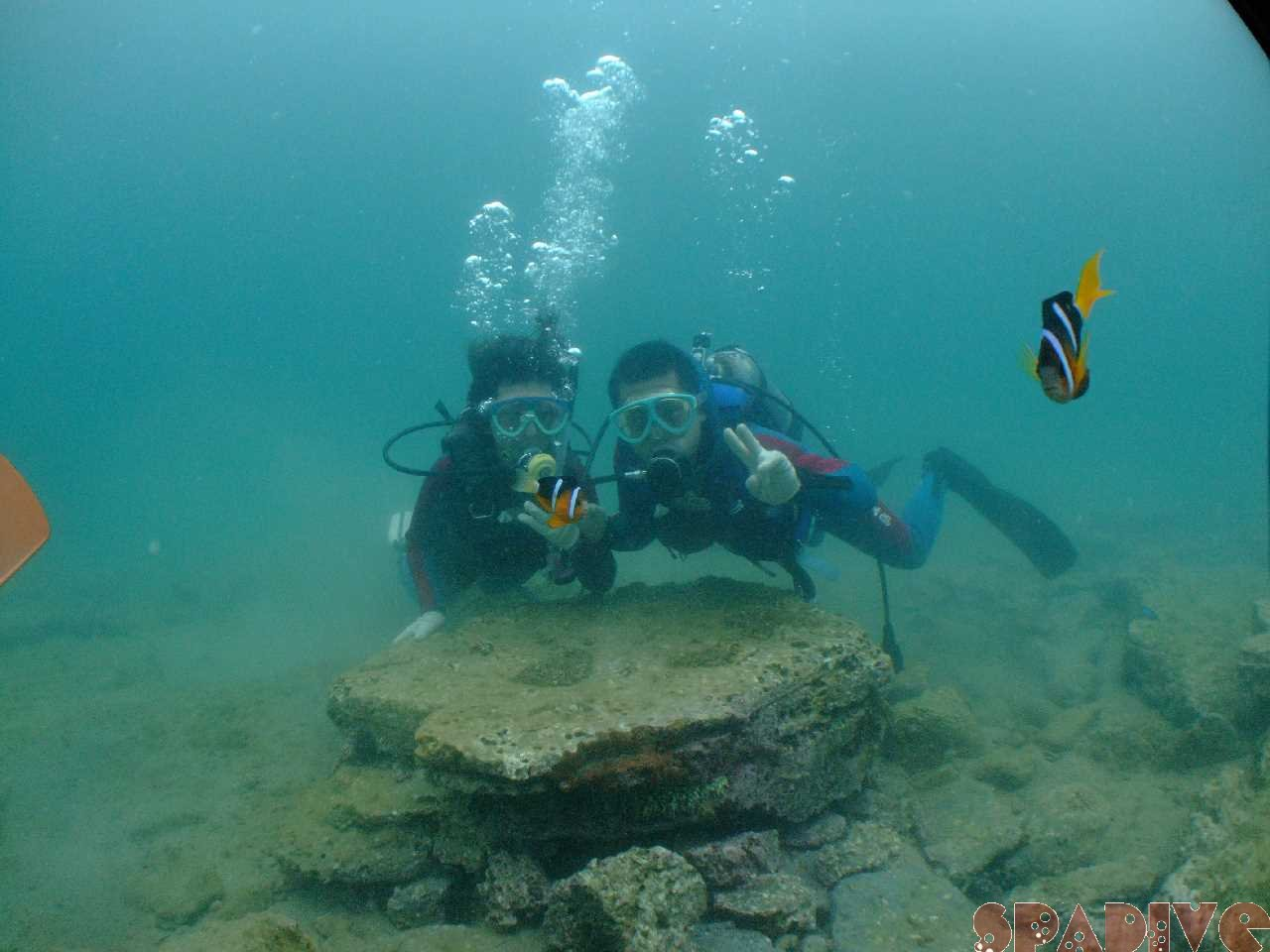 シュノーケリングと体験ダイビング|8/26/2009南紀白浜