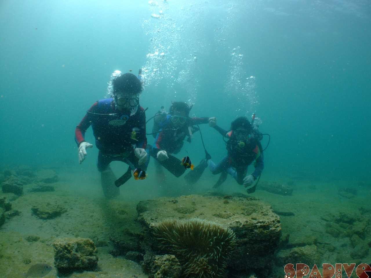 OWDライセンス取得コース&体験ダイビング 9/21/2009白浜