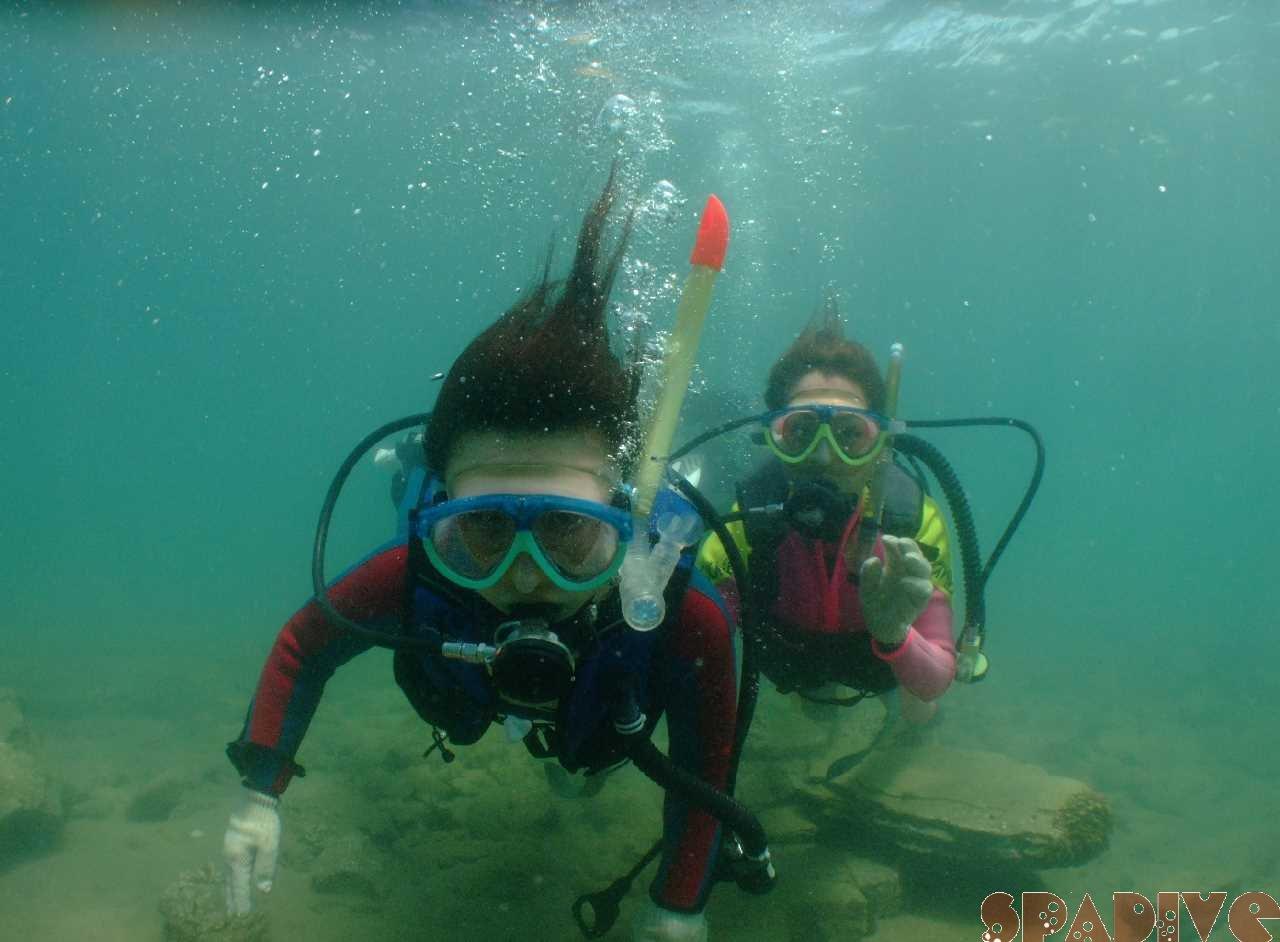 体験ダイビング&スノーケリング|8/11/2010白浜海情報-権現崎