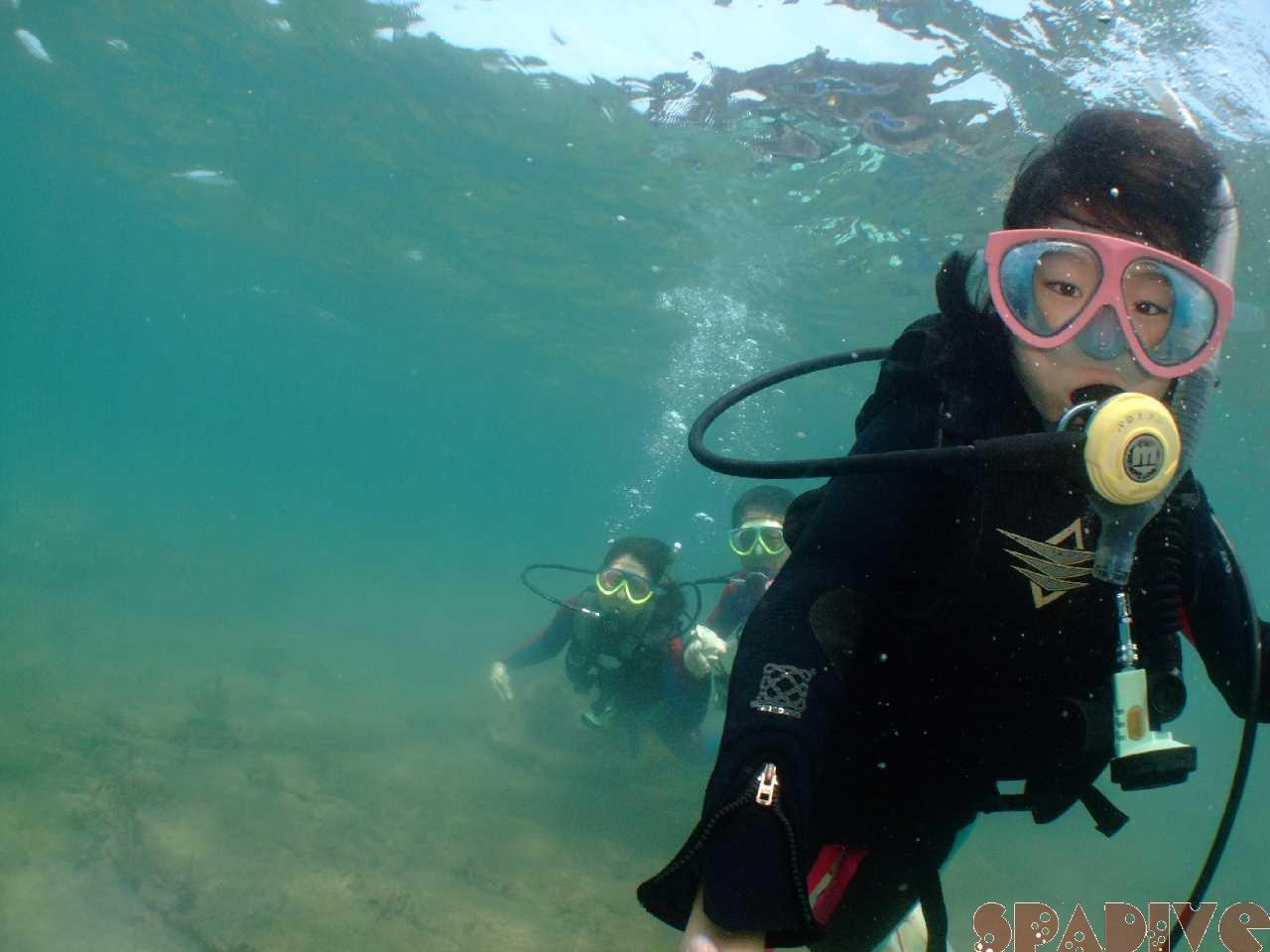 体験ダイビング&スノーケリング&ビーチファンダイブ|8/13/2010