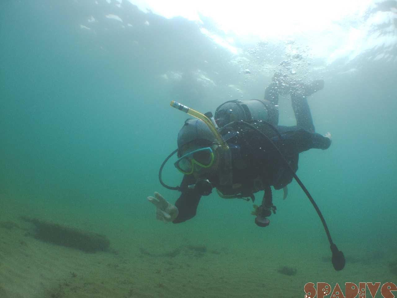 体験ダイビング|2/19/2011白浜海情報 権現崎