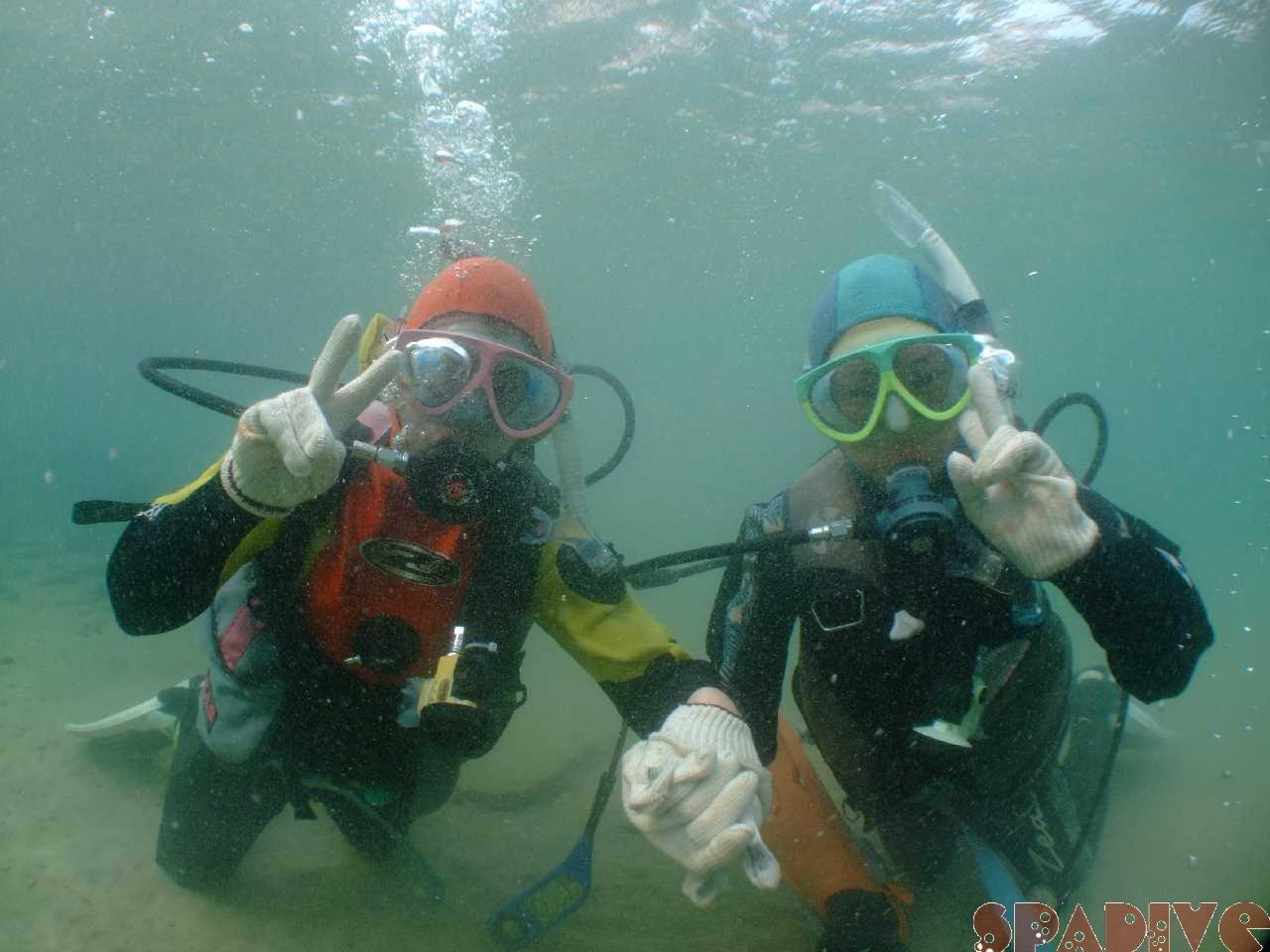 体験ダイビング|4/3/2011白浜海情報 権現崎