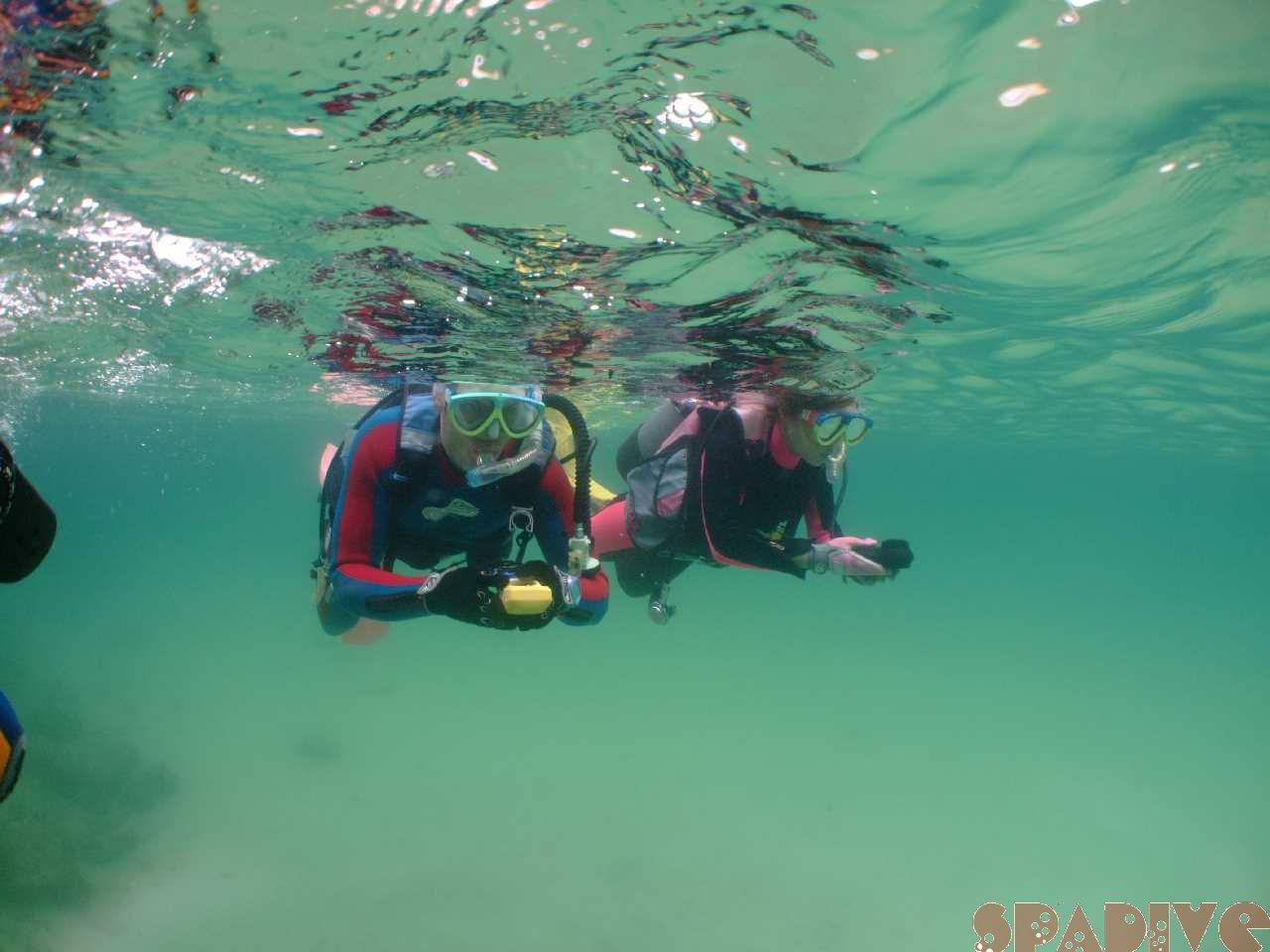OWDライセンス取得コース2日目&体験ダイビング|6/10/2011