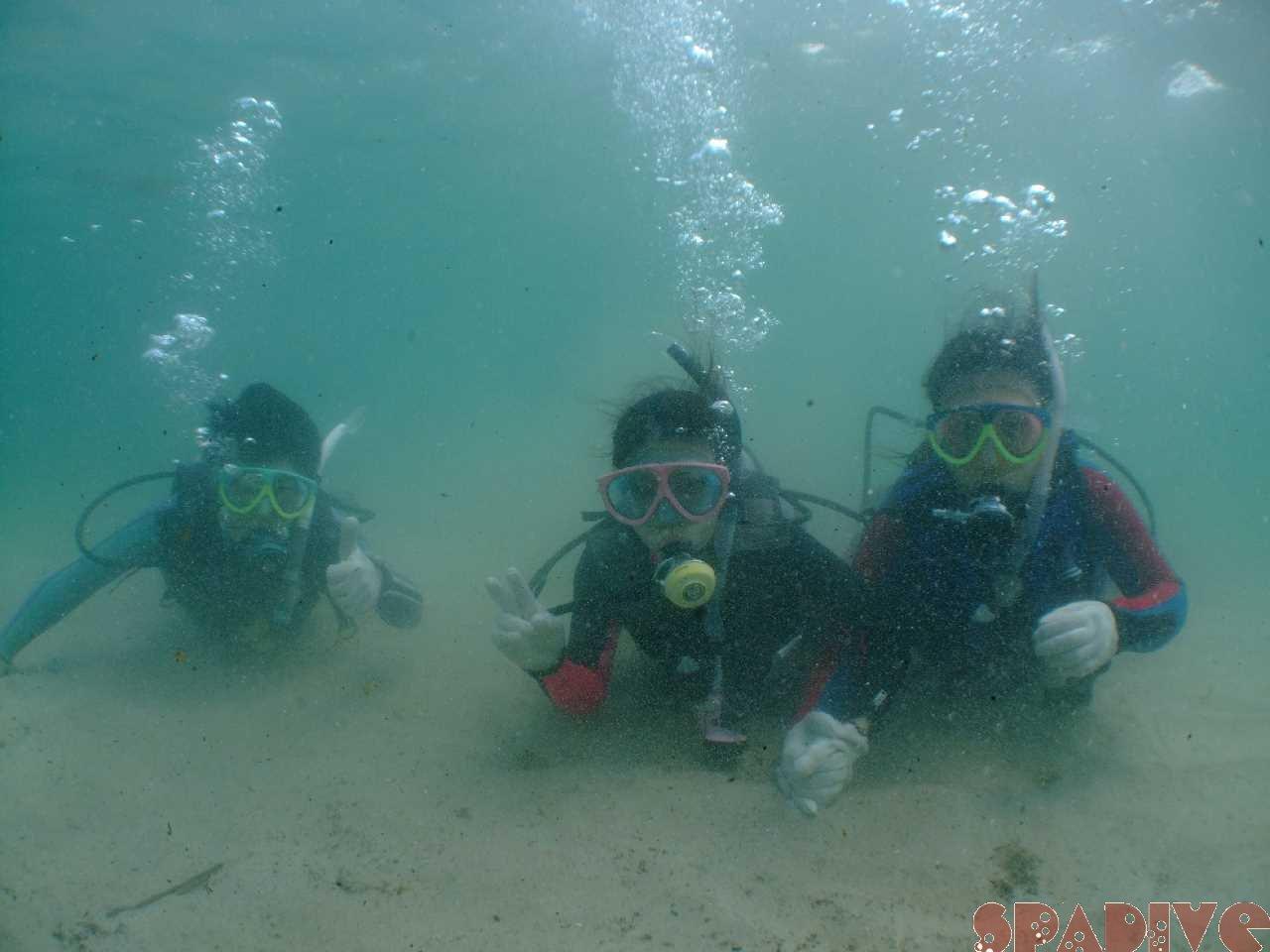 OWDライセンス取得コース&体験ダイビング 7/9/2011南紀白浜