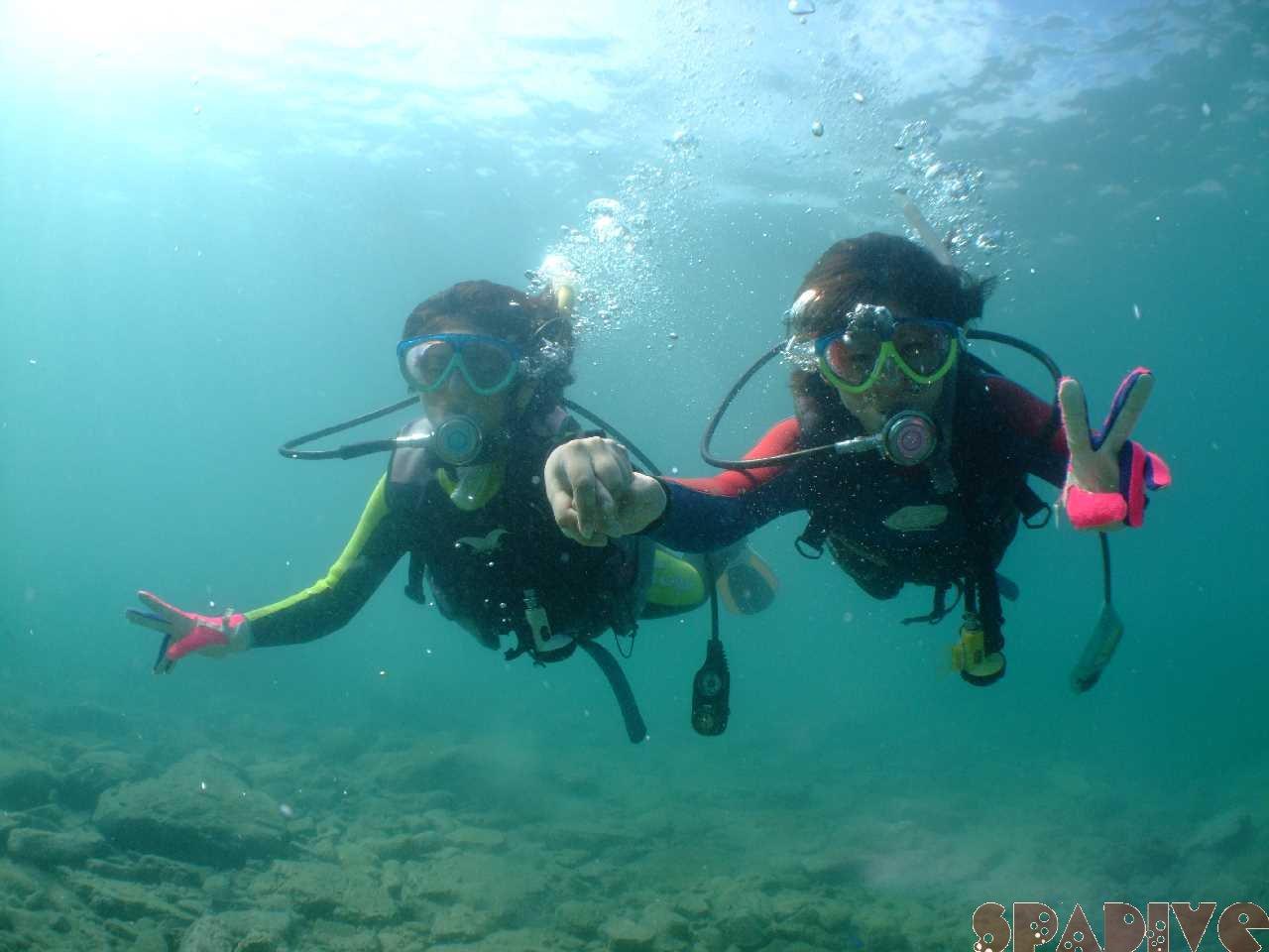 OWDライセンス取得コース&体験ダイビング|7/13/2011南紀白浜