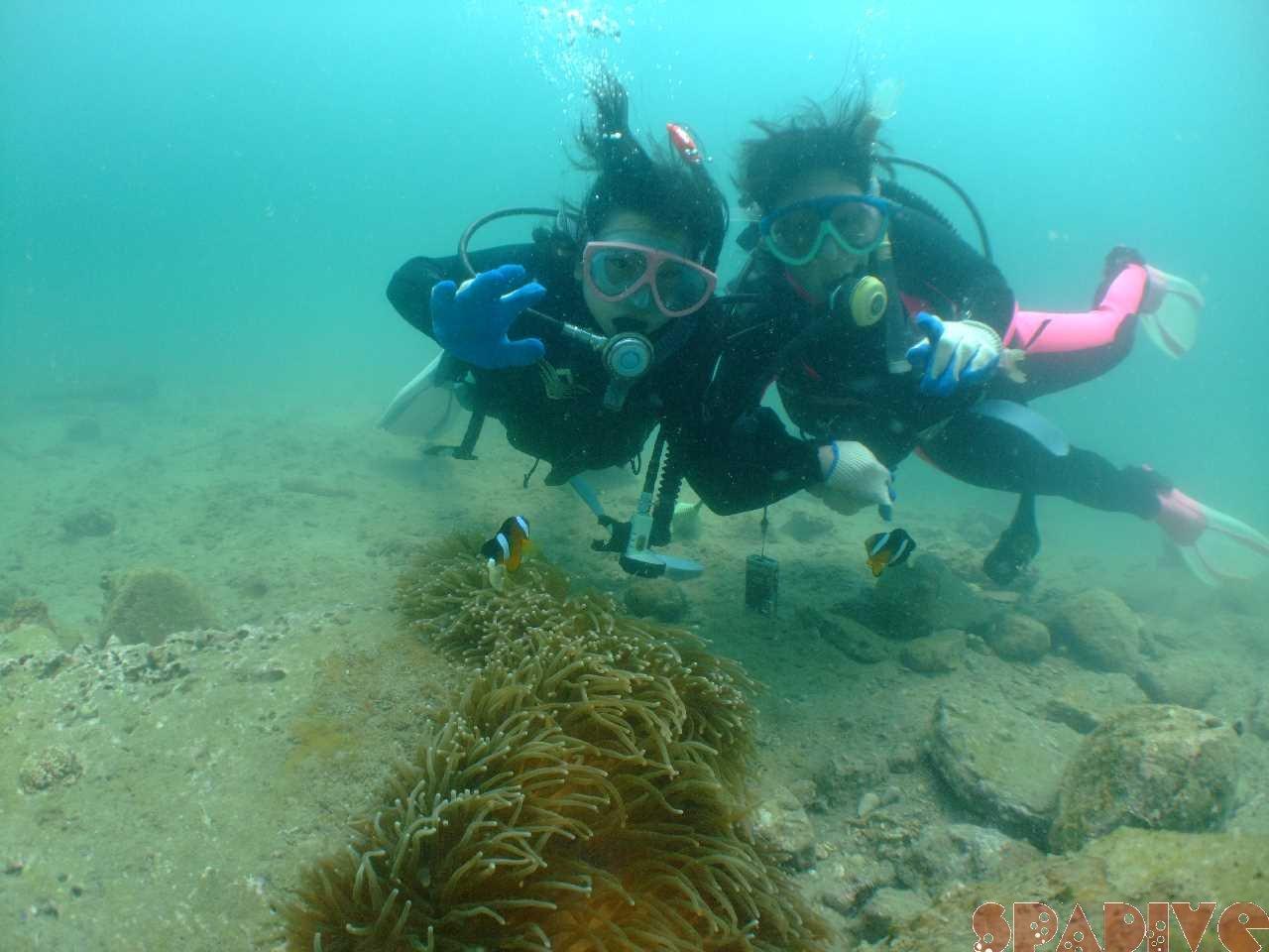 ファイル sea20110731.jpg