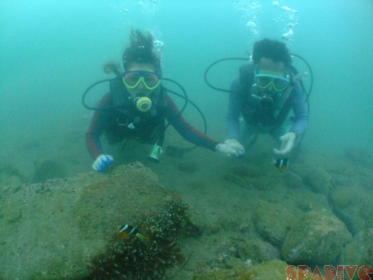 ファイル sea20110814.jpg