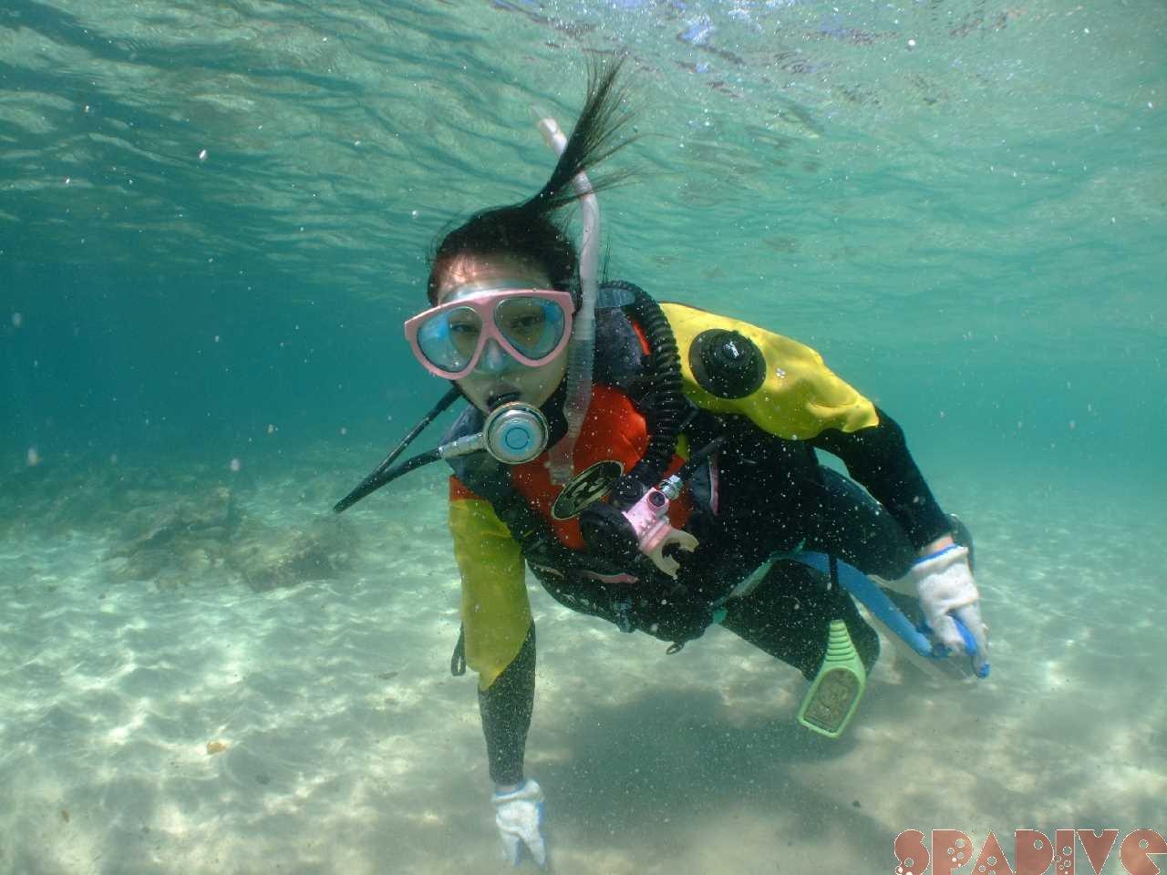 体験ダイビング|3/29/2012南紀白浜 権現崎