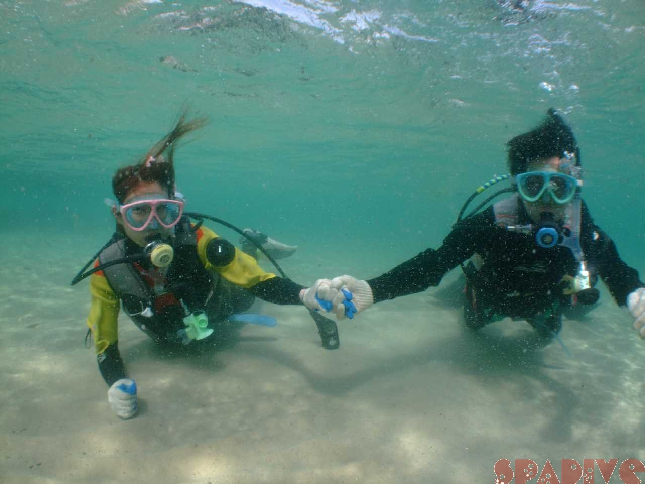 体験ダイビング|4/15/2012南紀白浜 権現崎