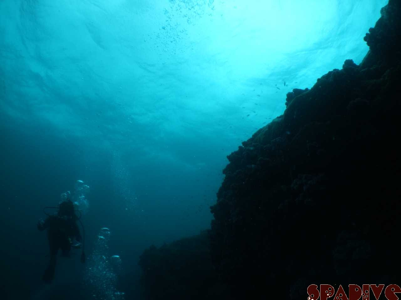 千石丘 沈船 ボートファンダイビング 7/3/2012南紀白浜