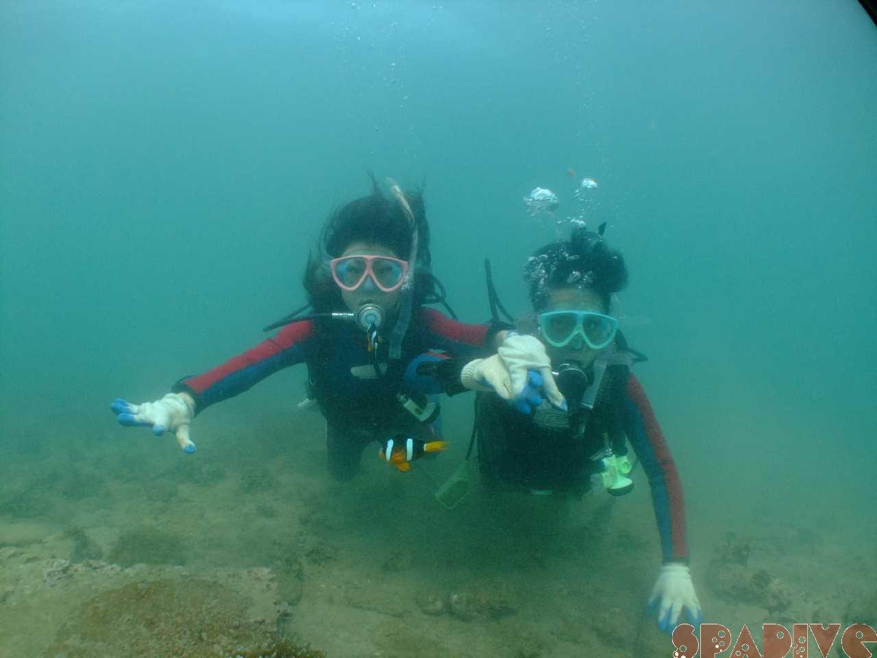 体験ダイビング スノーケリング|7/8/2012南紀白浜 権現崎