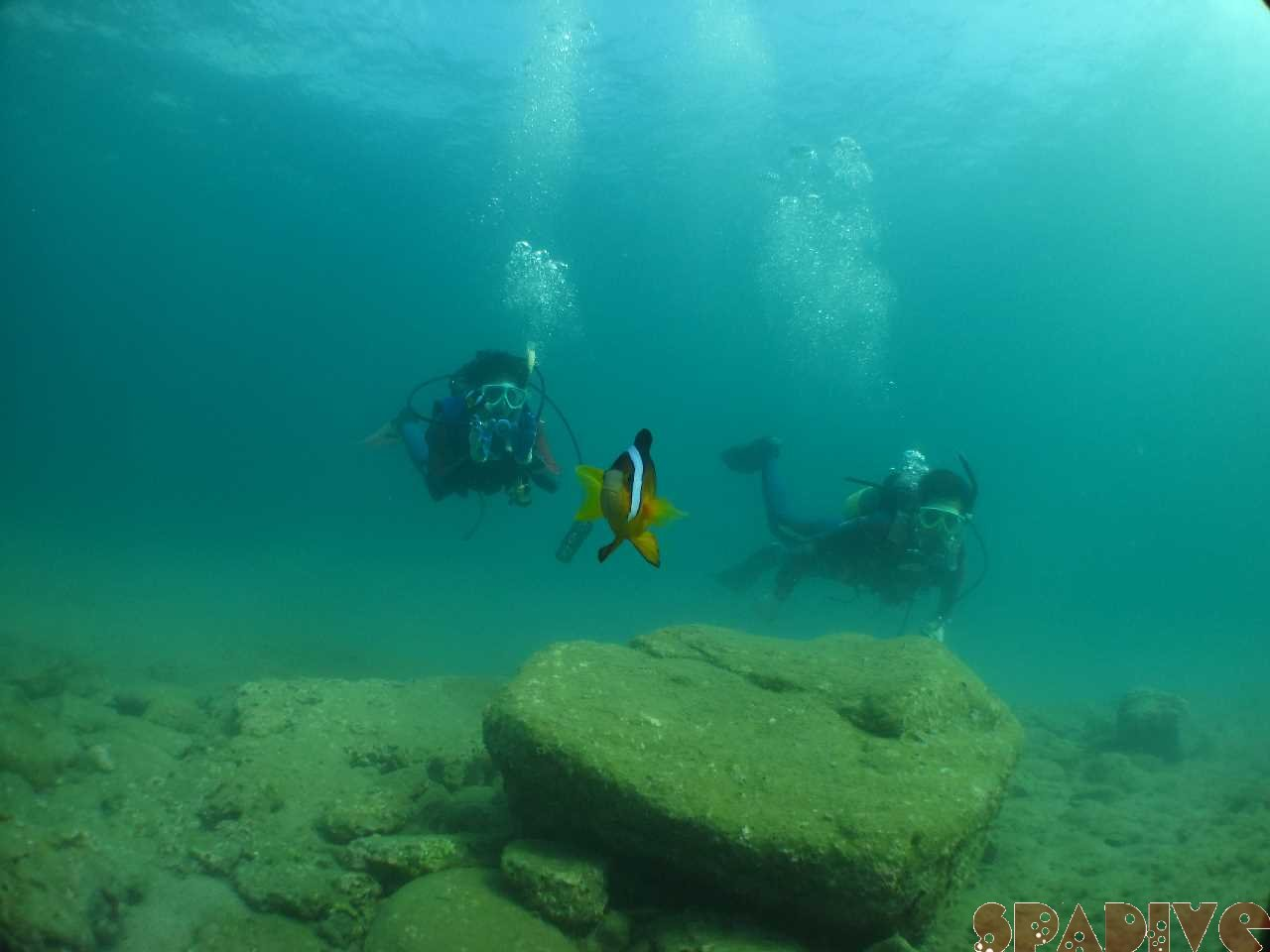 体験シュノーケリング&OWDライセンス取得コース海洋2|9/4/2012