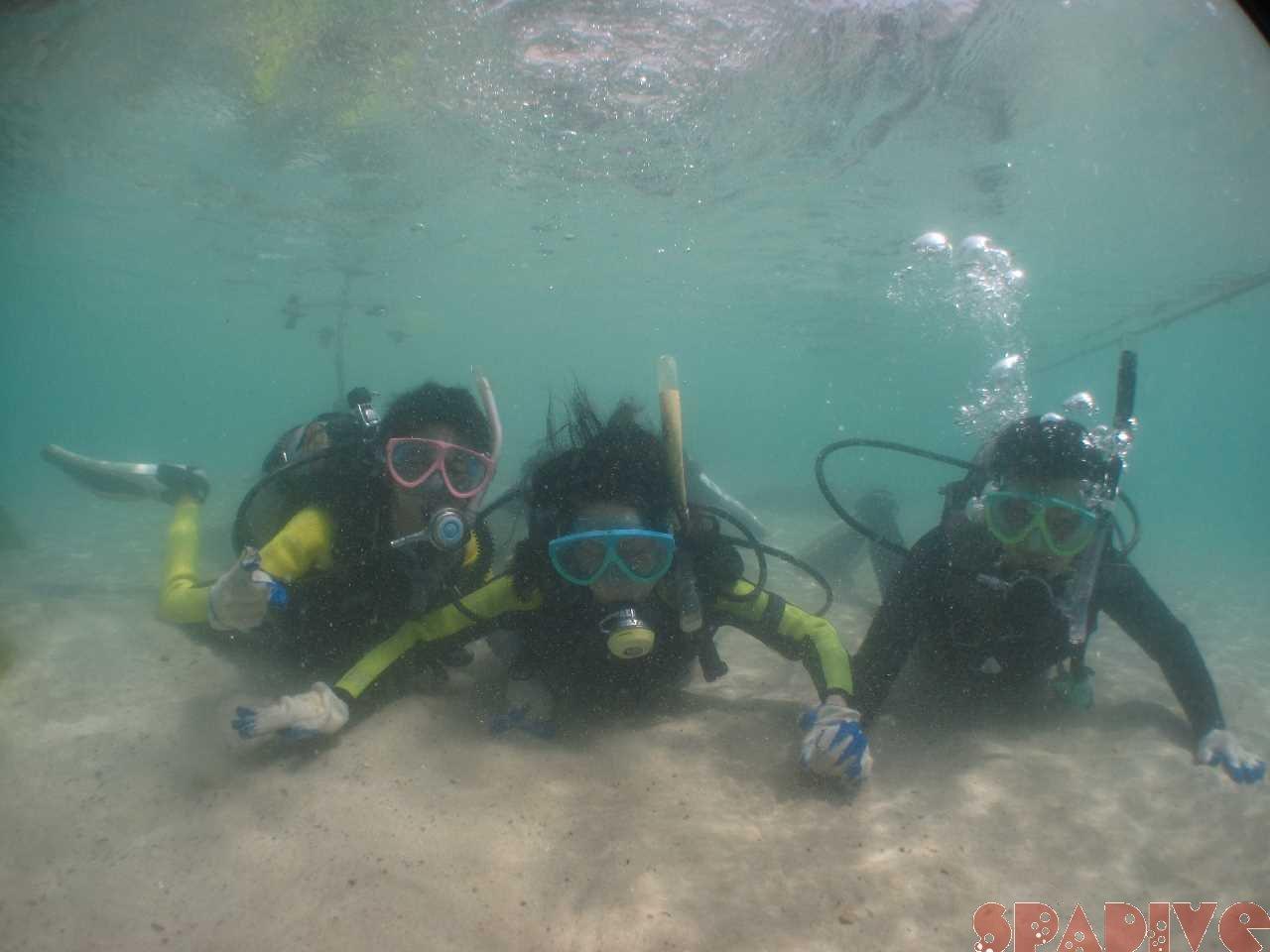 体験ダイビング|OWDライセンス取得コース|9/8/2012権現崎