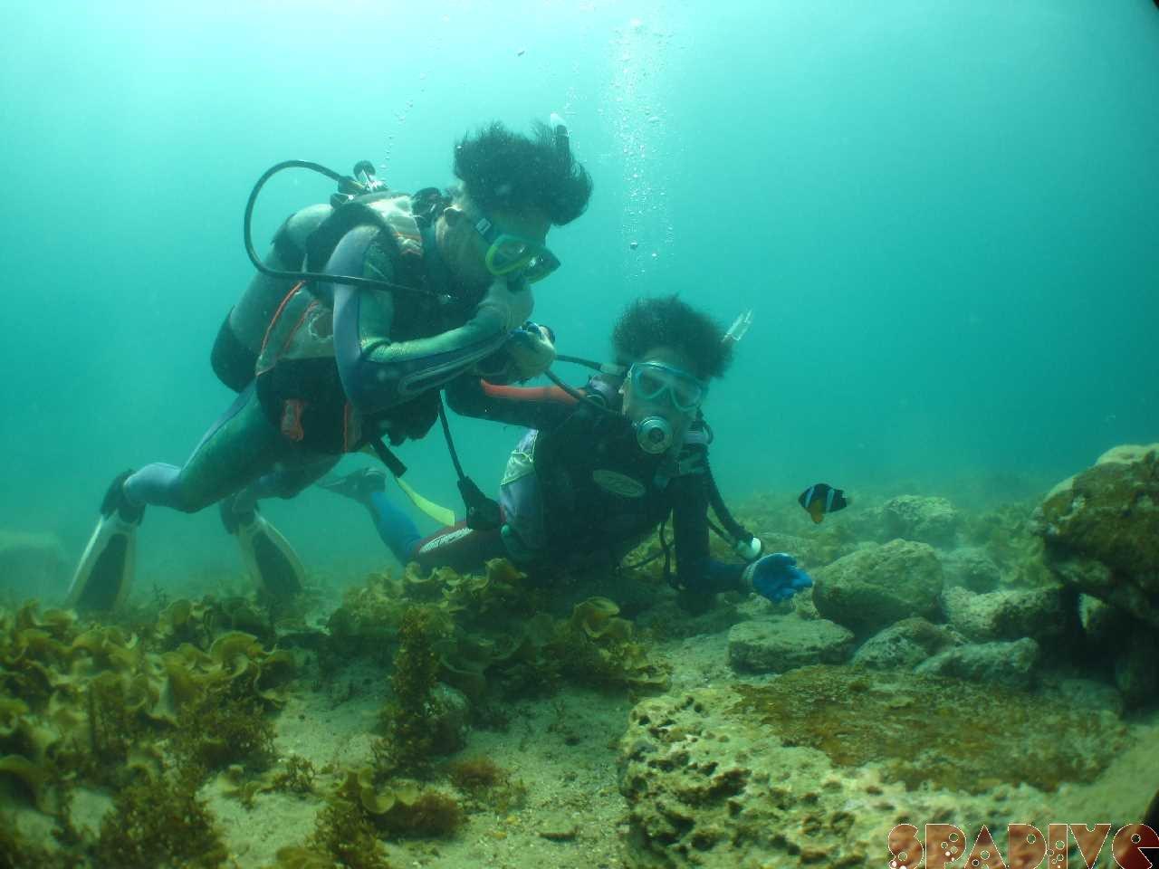 白良浜海開きに気球|権現崎 体験ダイビング|5/3/2013南紀白浜