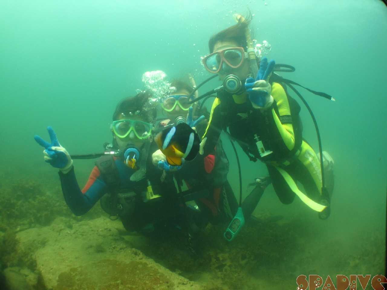 OWDライセンス取得コース海洋実習と体験ダイビング|6/29/2013