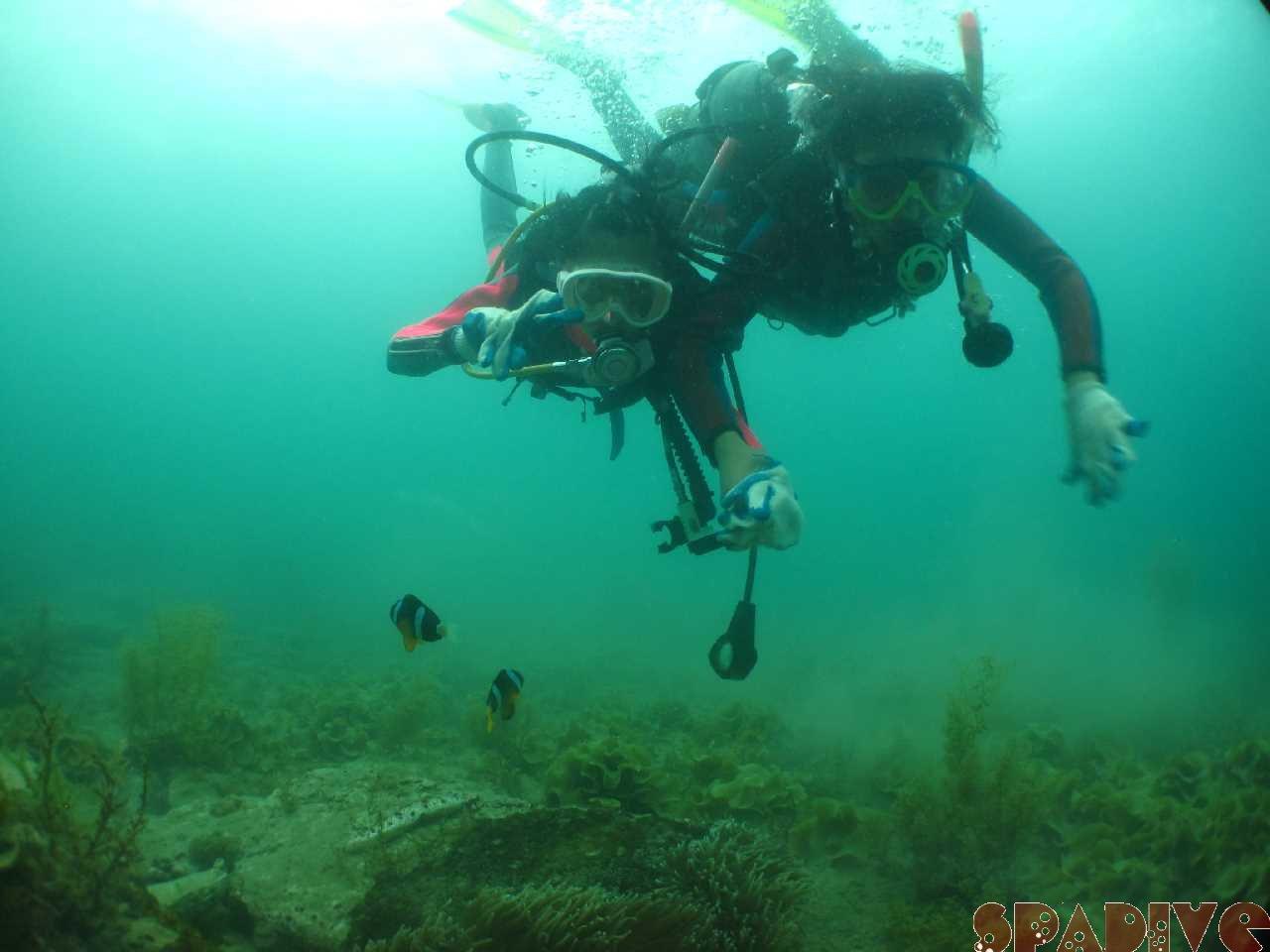 白良浜の海開き|体験ダイビング|5/3/2015