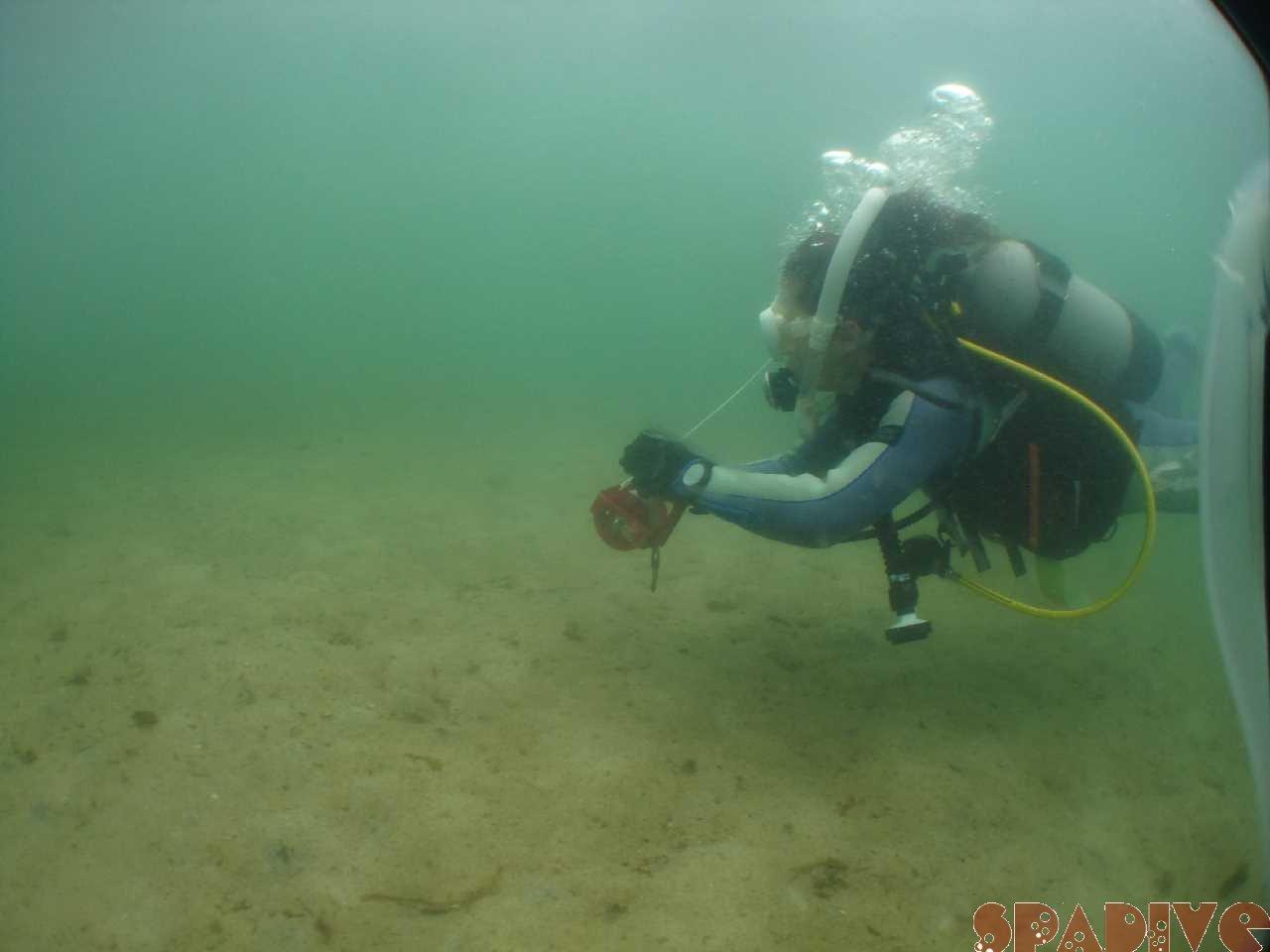 レスキューコース水中画像