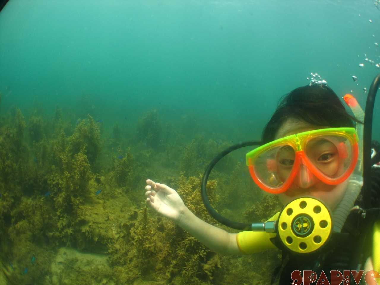 体験ダイビング|ひっくり返らないための足ひれ(フィン)の使い方
