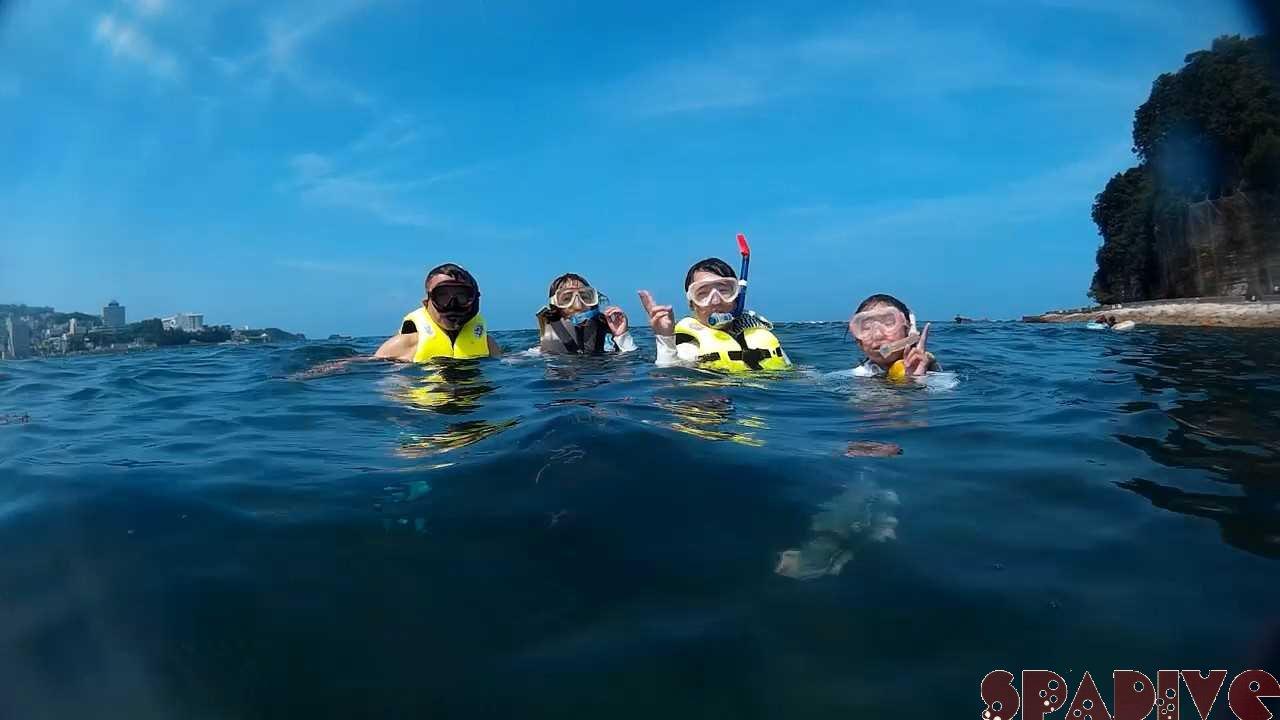 2020年8月撮影海フォトギャラリー|南紀白浜スパダイブ