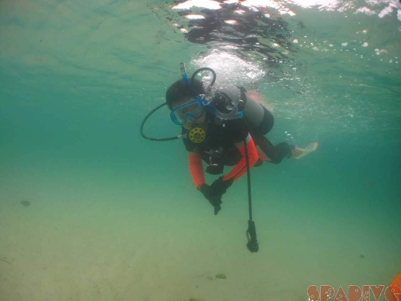 2020年9月撮影海フォトギャラリー|南紀白浜スパダイブ