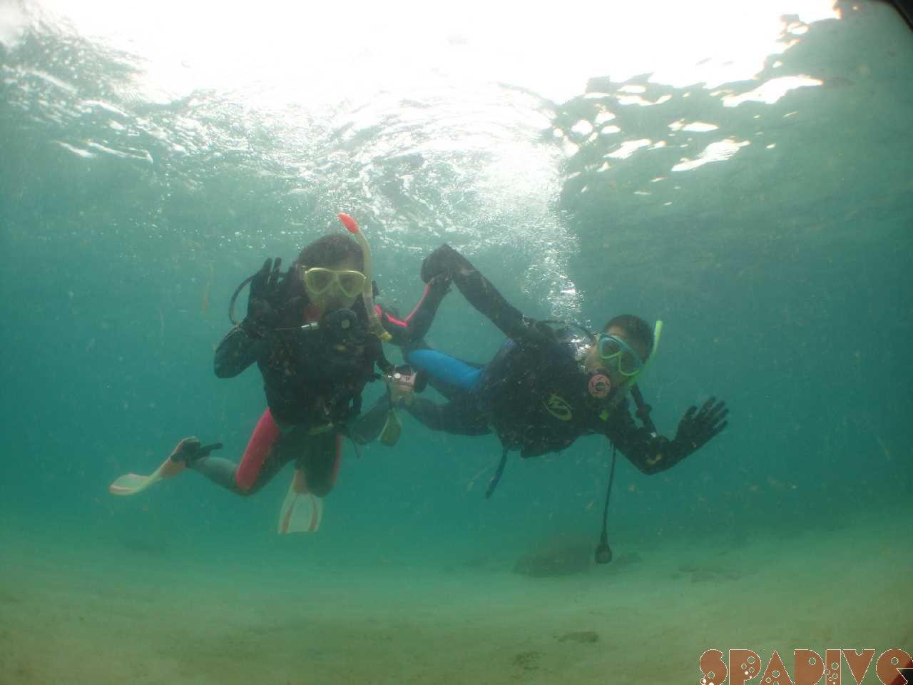 2020年10月撮影海フォトギャラリー|南紀白浜スパダイブ