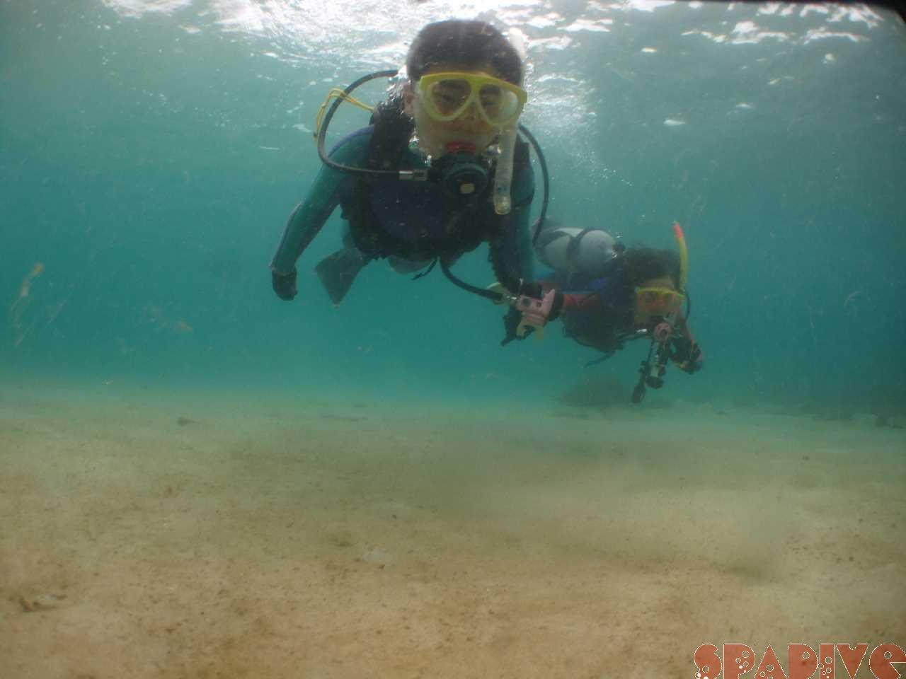 白浜権現崎10月の水中画像1