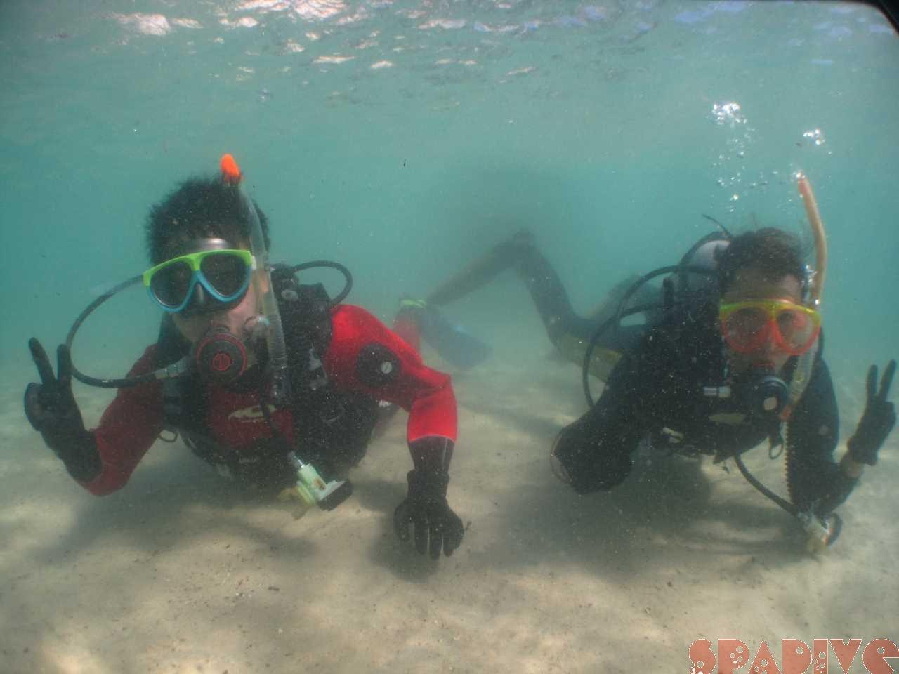 11/3/20体験ダイビング|ドライスーツでまだ温いうちに!南紀白浜
