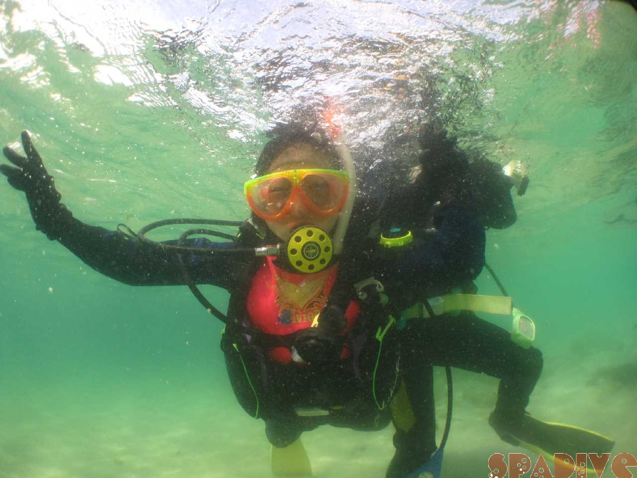 体験ダイビング|3/20/2021南紀白浜