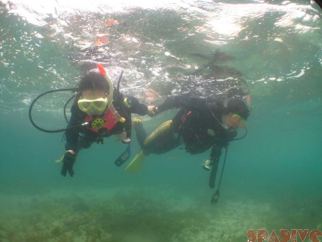 白浜権現崎3月の水中画像1