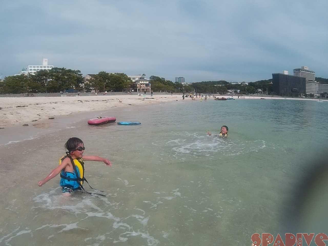 2021年6月撮影海フォトギャラリー|南紀白浜スパダイブ