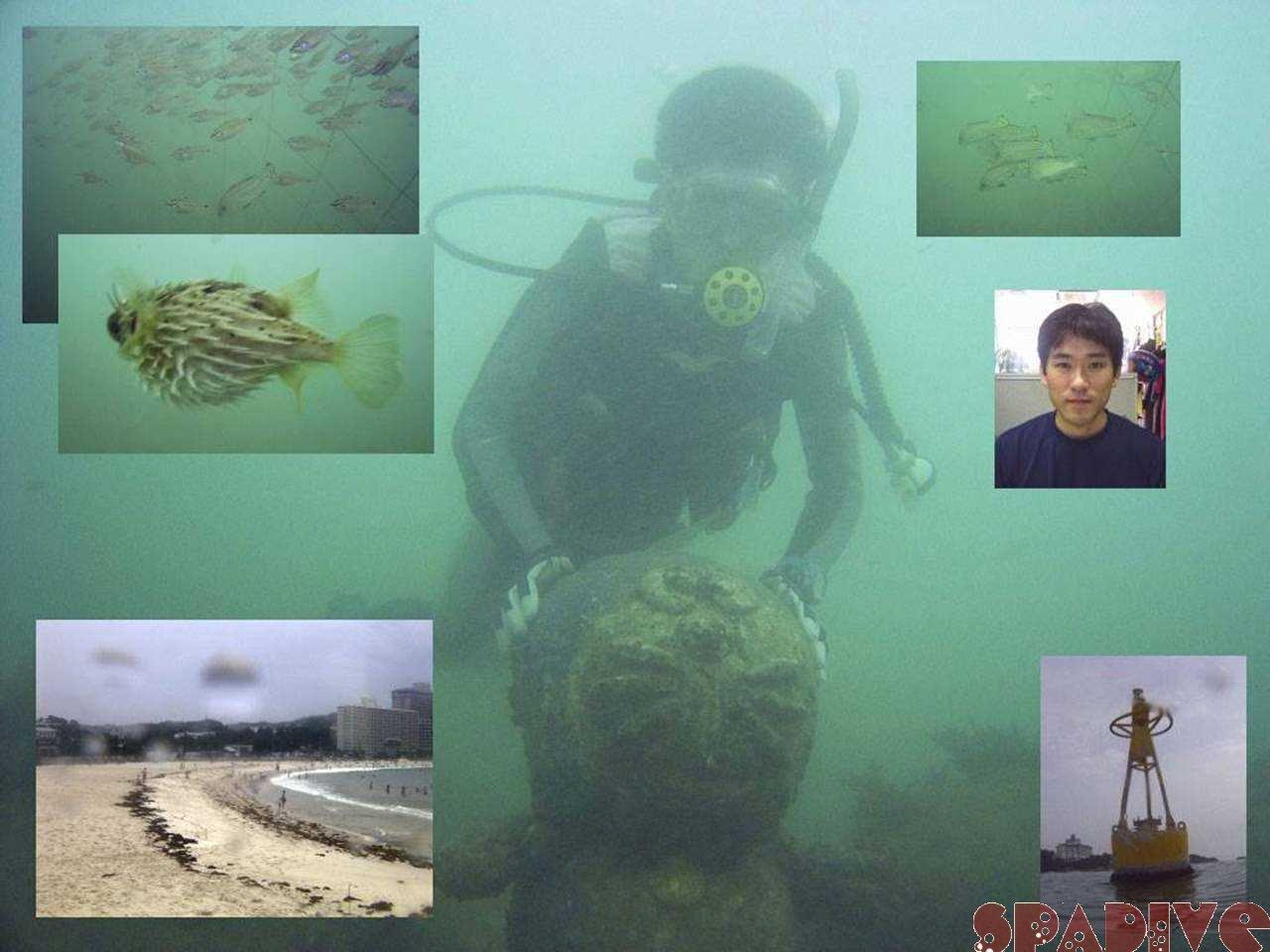 ファイル sea20050710.jpg