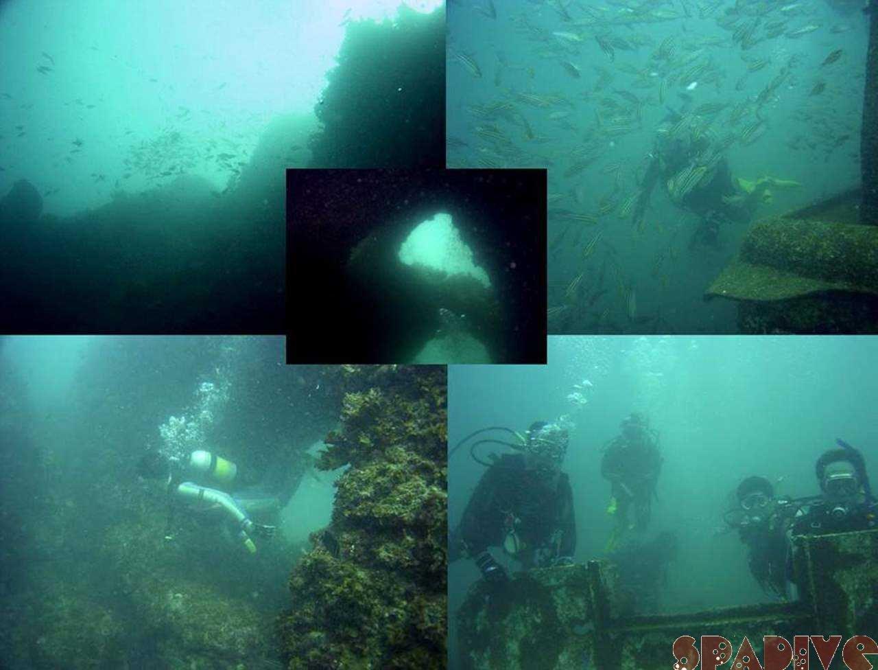 色津&沈船ボートファンダイブ|8/6/2005白浜