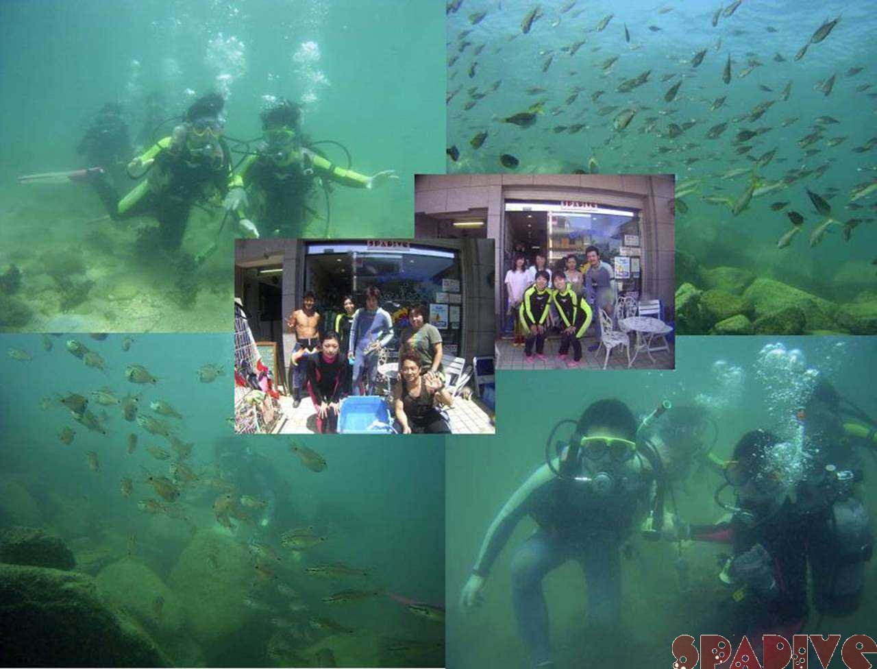 体験ダイビング&AOWアドバンス&FUNファンダイブ 8/7/2005白浜