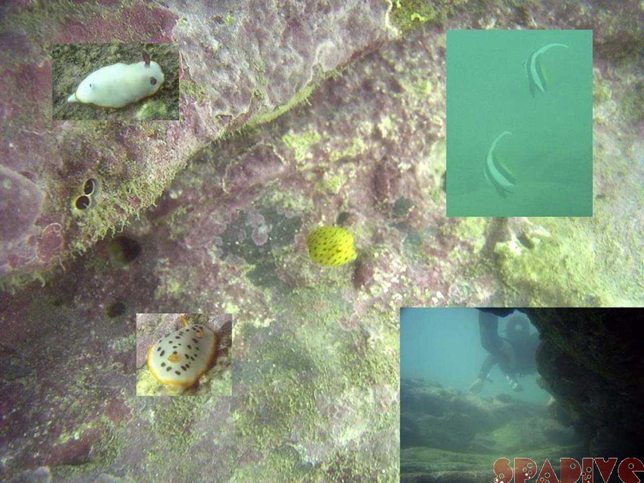 ファイル sea20050908.jpg