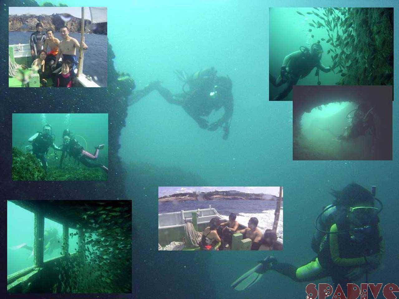 三段壁&沈船ボートファン&AOW&SP&DMダイビング|9/15/2005
