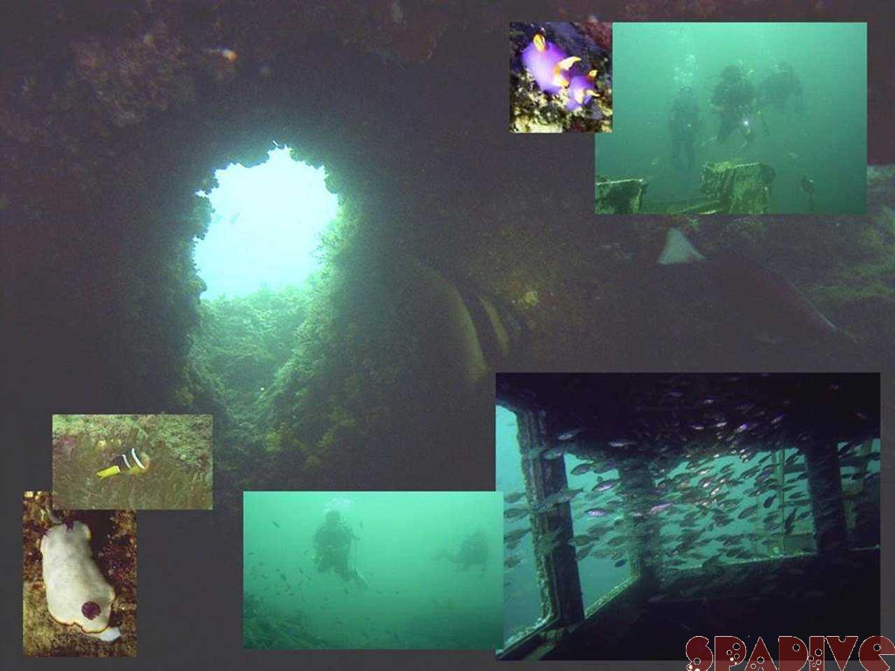 ファイル sea20050916.jpg