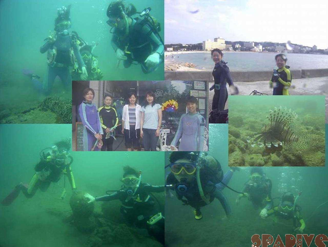 体験ダイビング|9/17/2005白浜権現崎