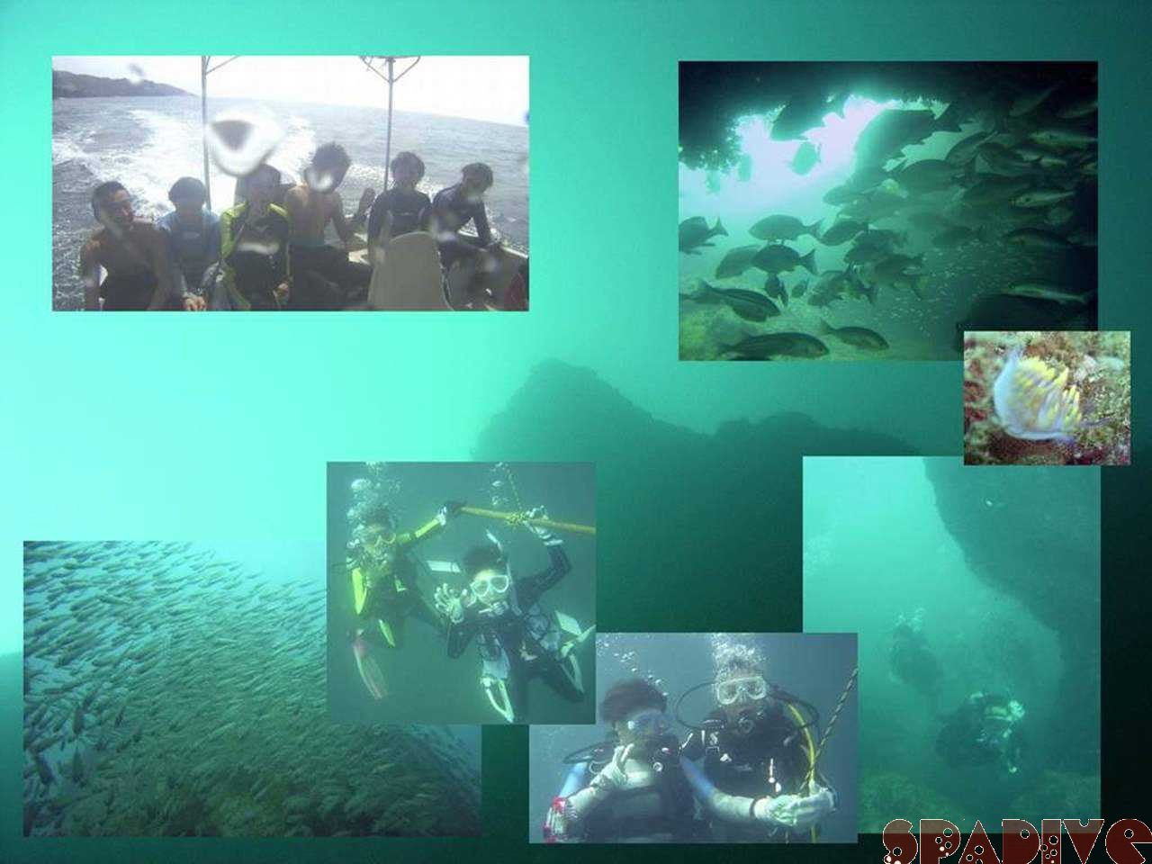 三段壁&沈船ボートAOWアドバンスライセンス取得講習|9/20/2005白浜