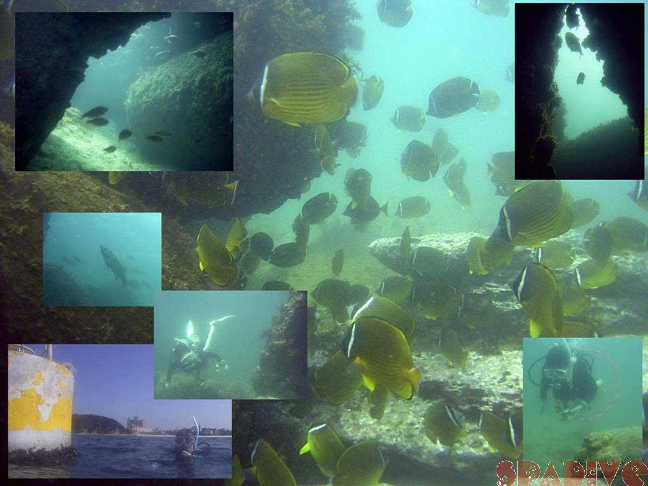 ファイル sea20050930.jpg
