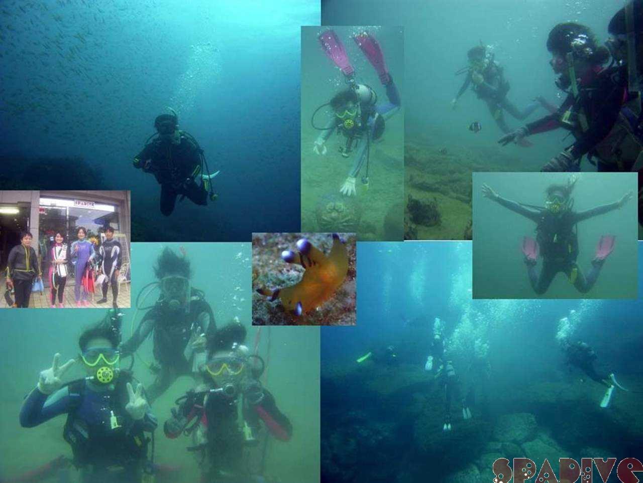 千石丘ファンダイブ|体験ダイビング|ダイブマスター|11/6/2005