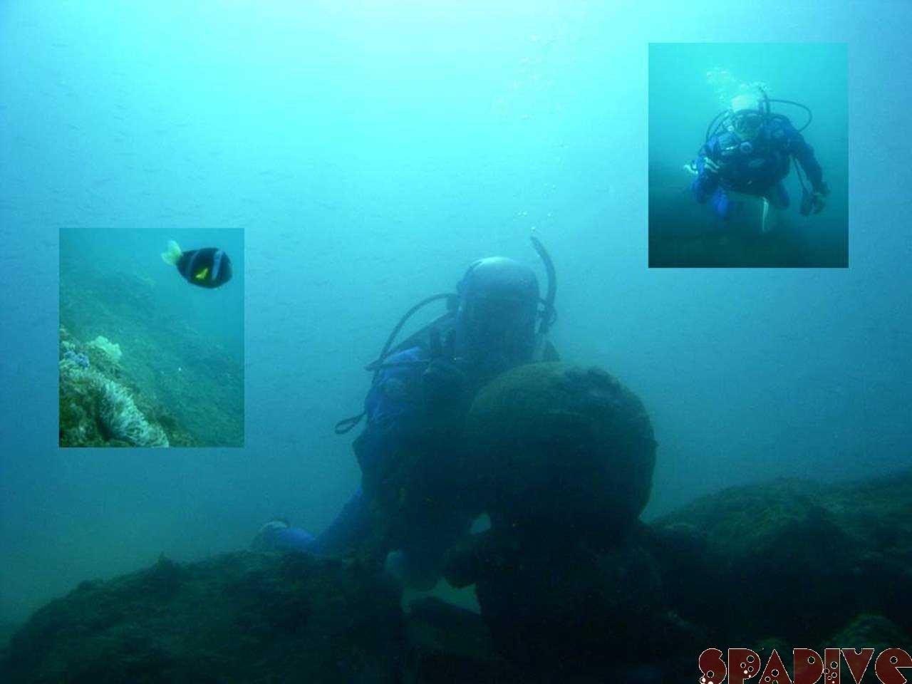 2005年大晦日締めくくりダイブ|中島観測塔ボート&権現崎ビーチ