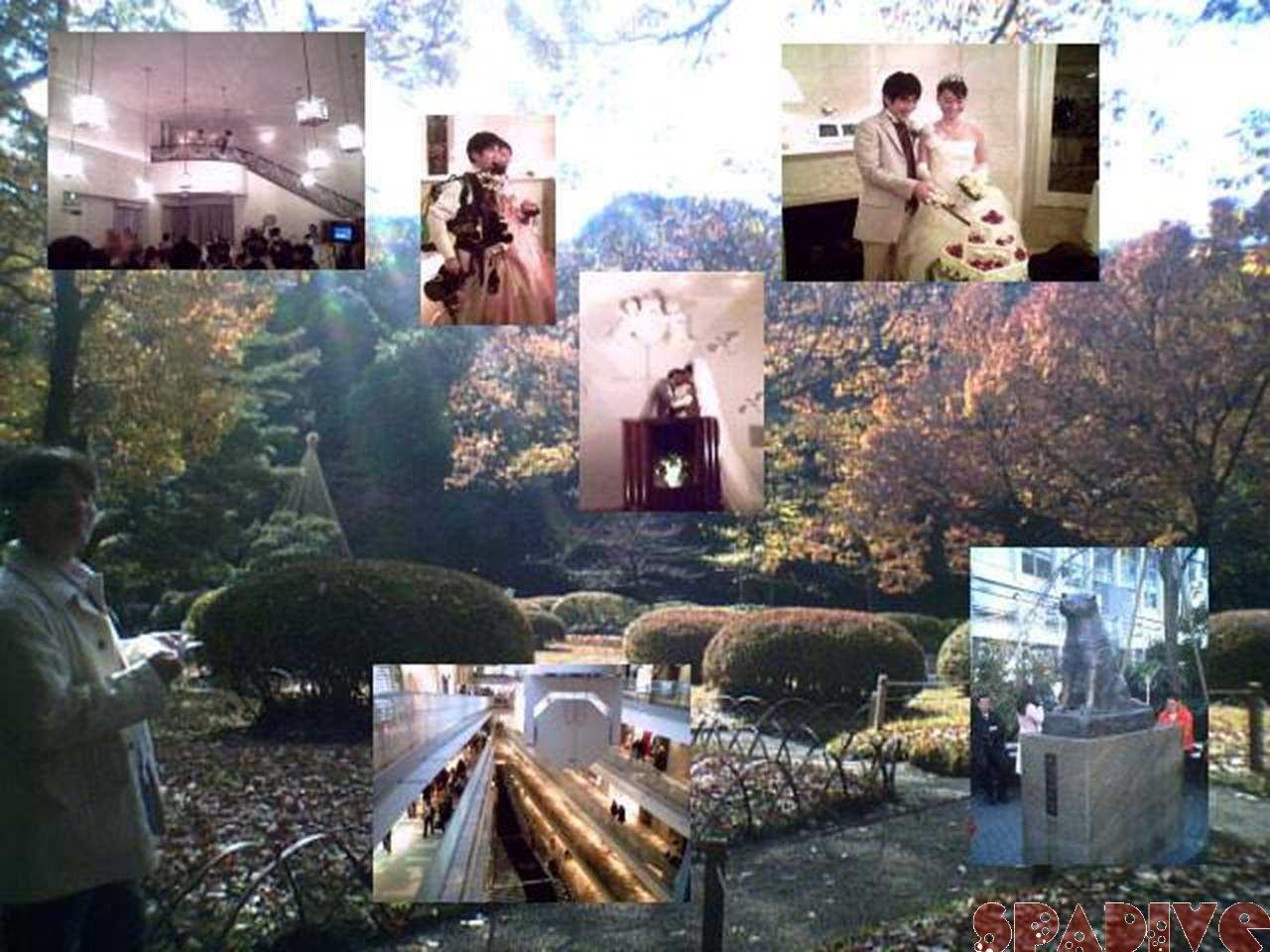 2年ぶりの東京紀行 結婚式と友人再会とPADIセミナー 12/13/2006